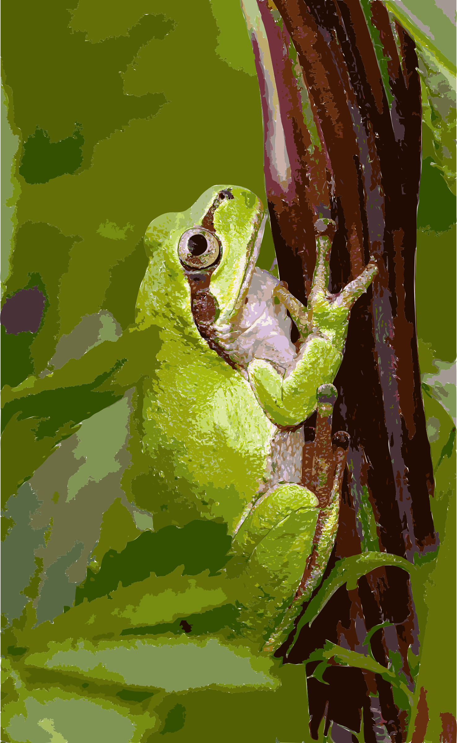 Tree frog2 by 5me7p4+duxtvkgxmihwc