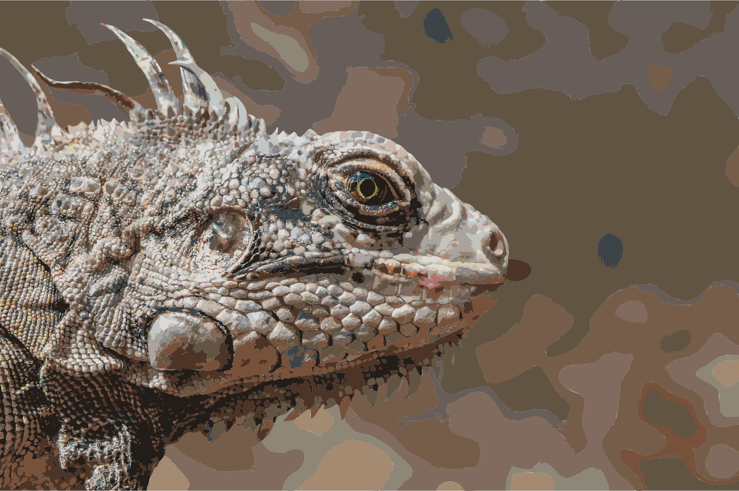 Endangered species Iguana Iguana from Margarita Island by 5mee4d+cgehjn4ybt98o