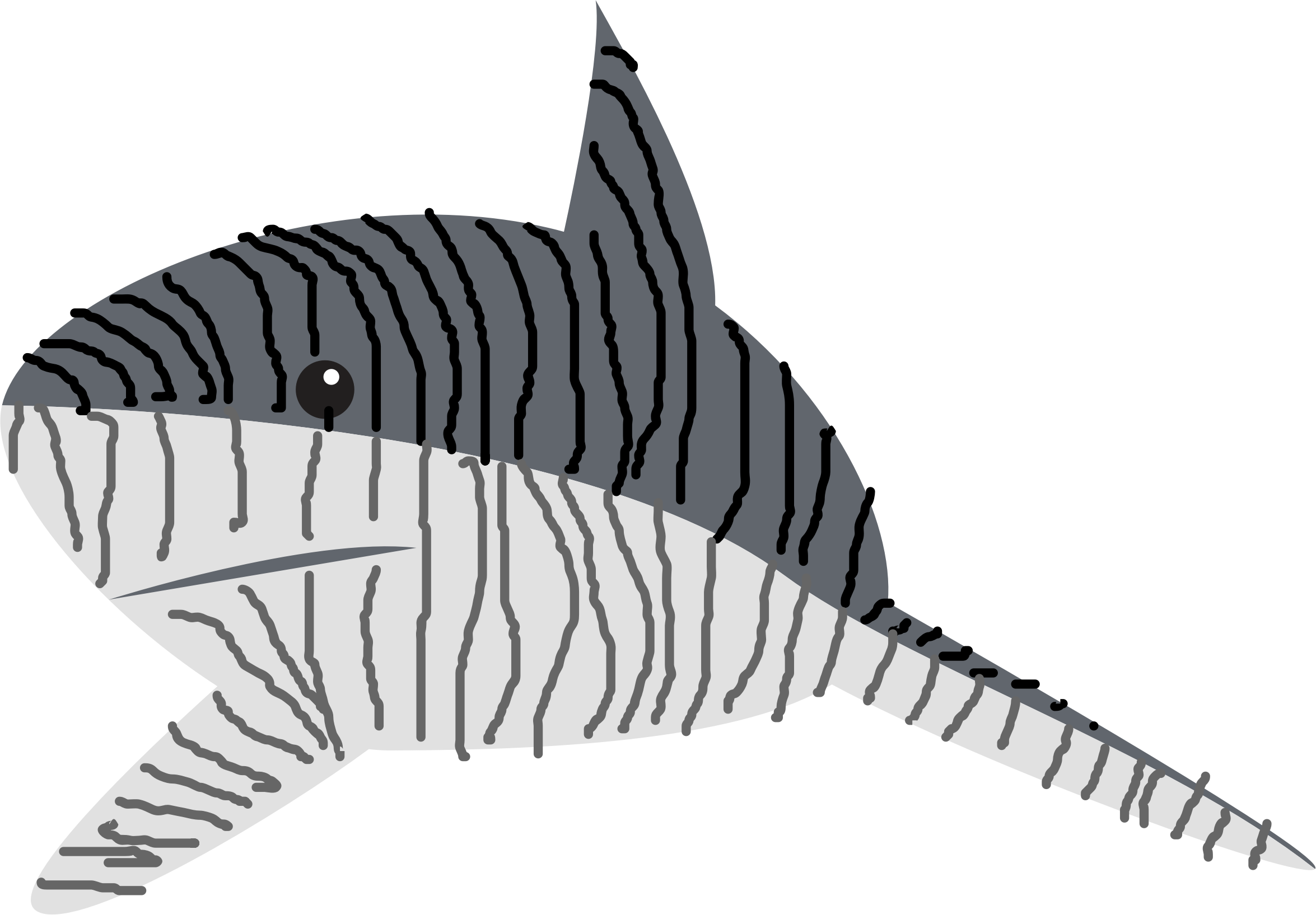 Tiger Shark (Beast Of The Seas) by 116557