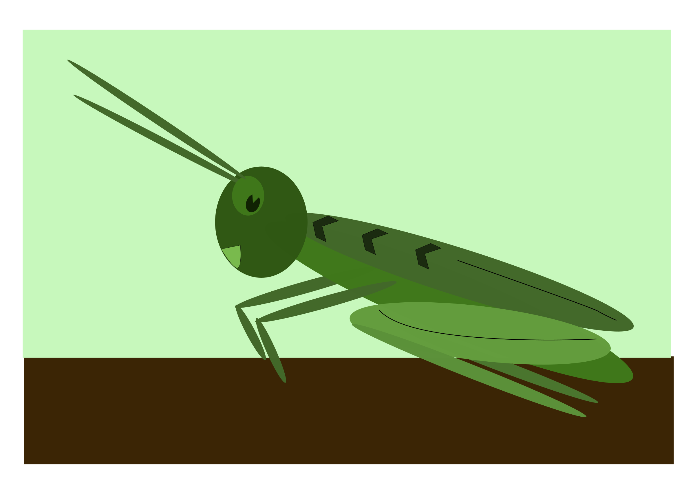 grasshopper by me4tanik