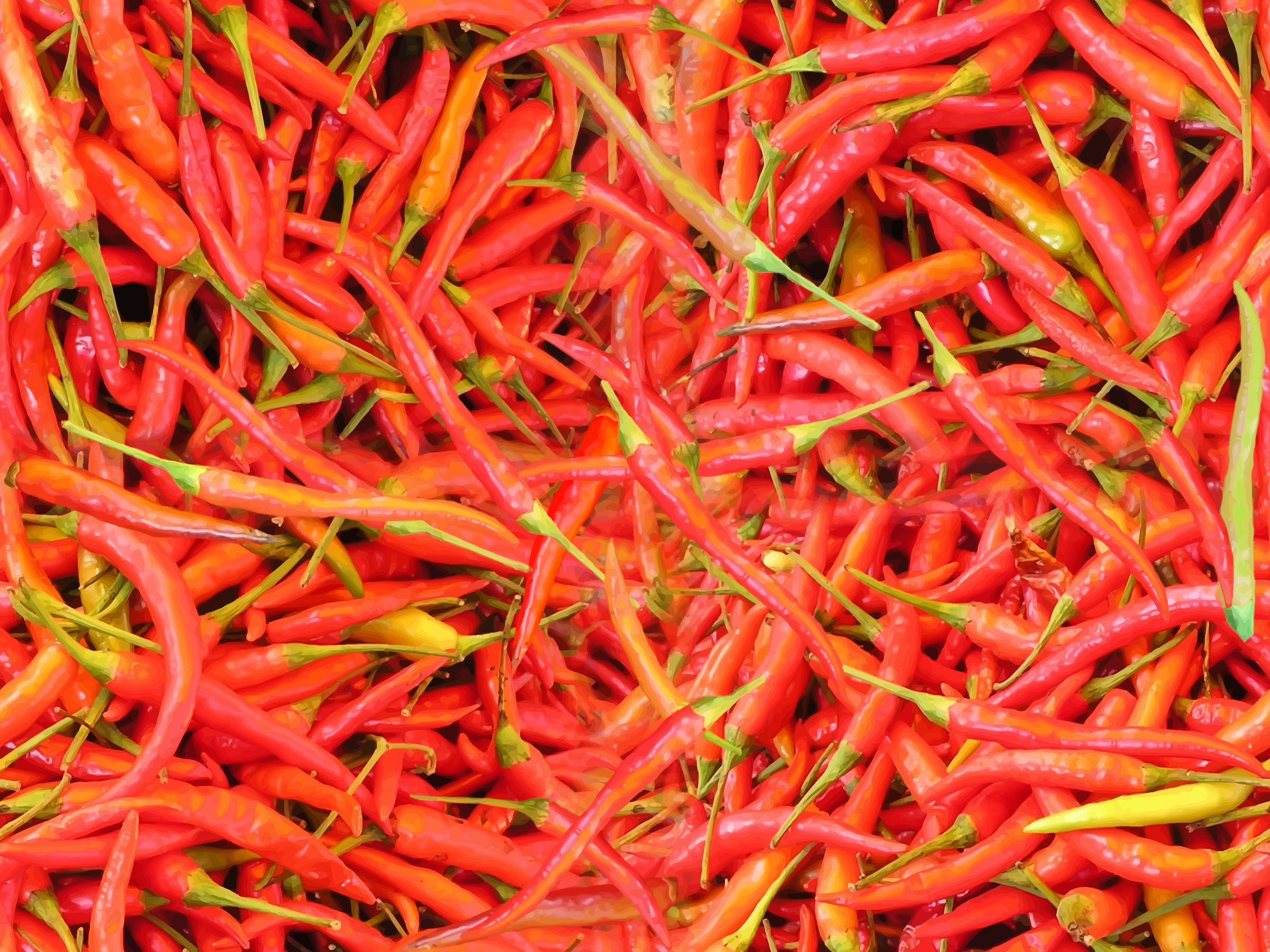 Chillies by Firkin