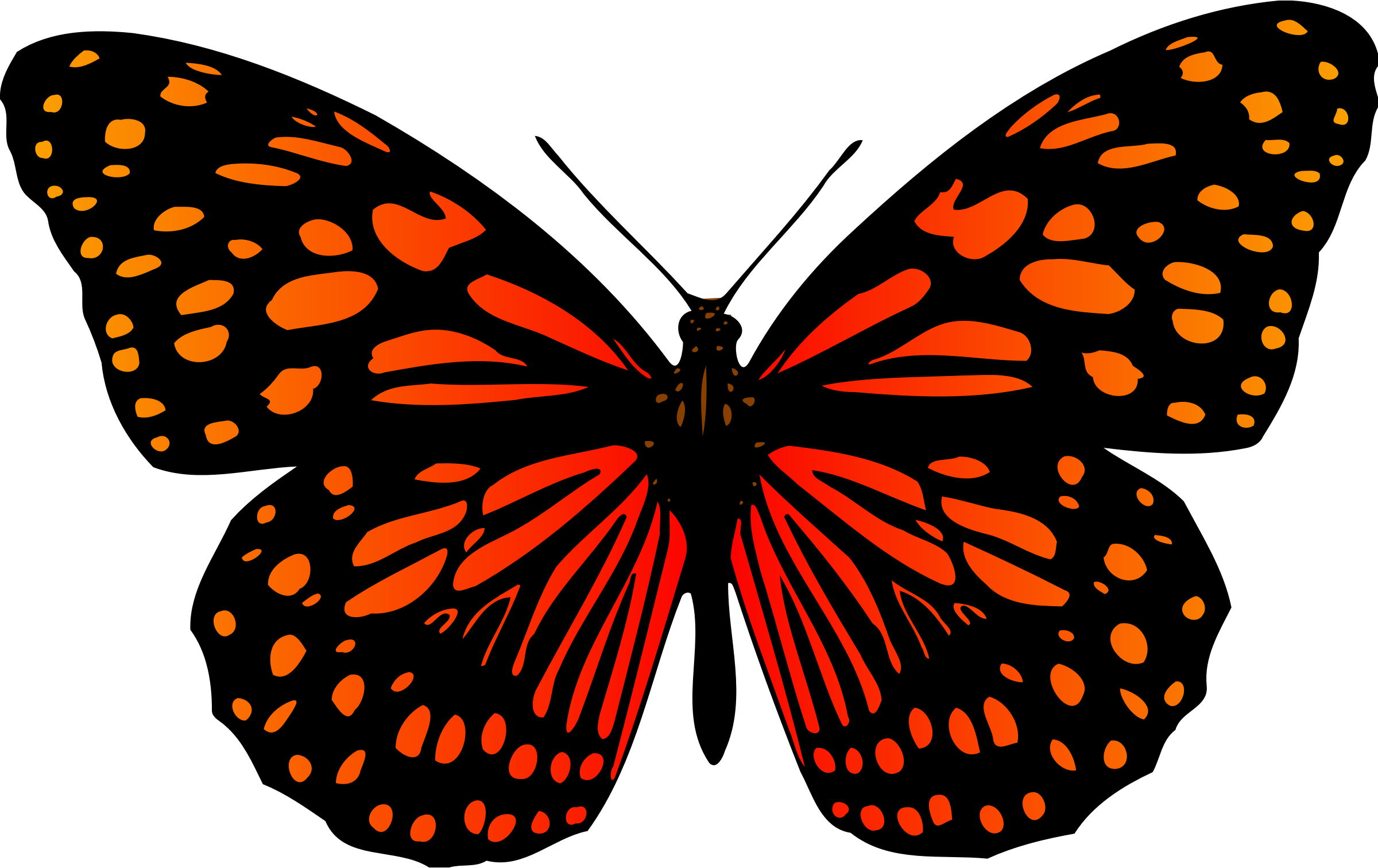 Butterfly 17 (colour) by Firkin