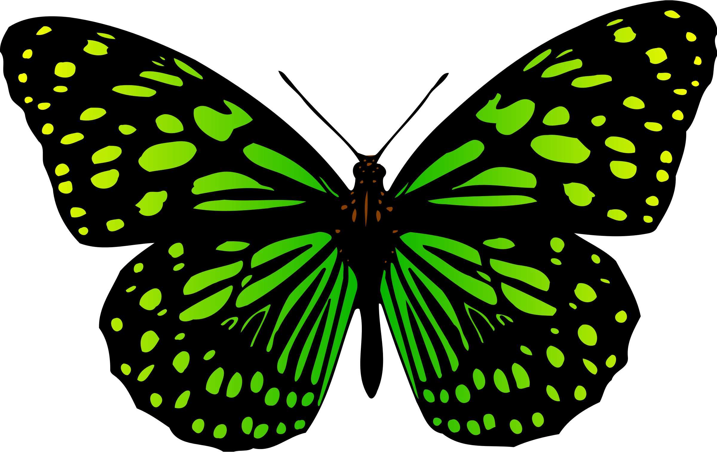 Butterfly 17 (colour 2) by Firkin