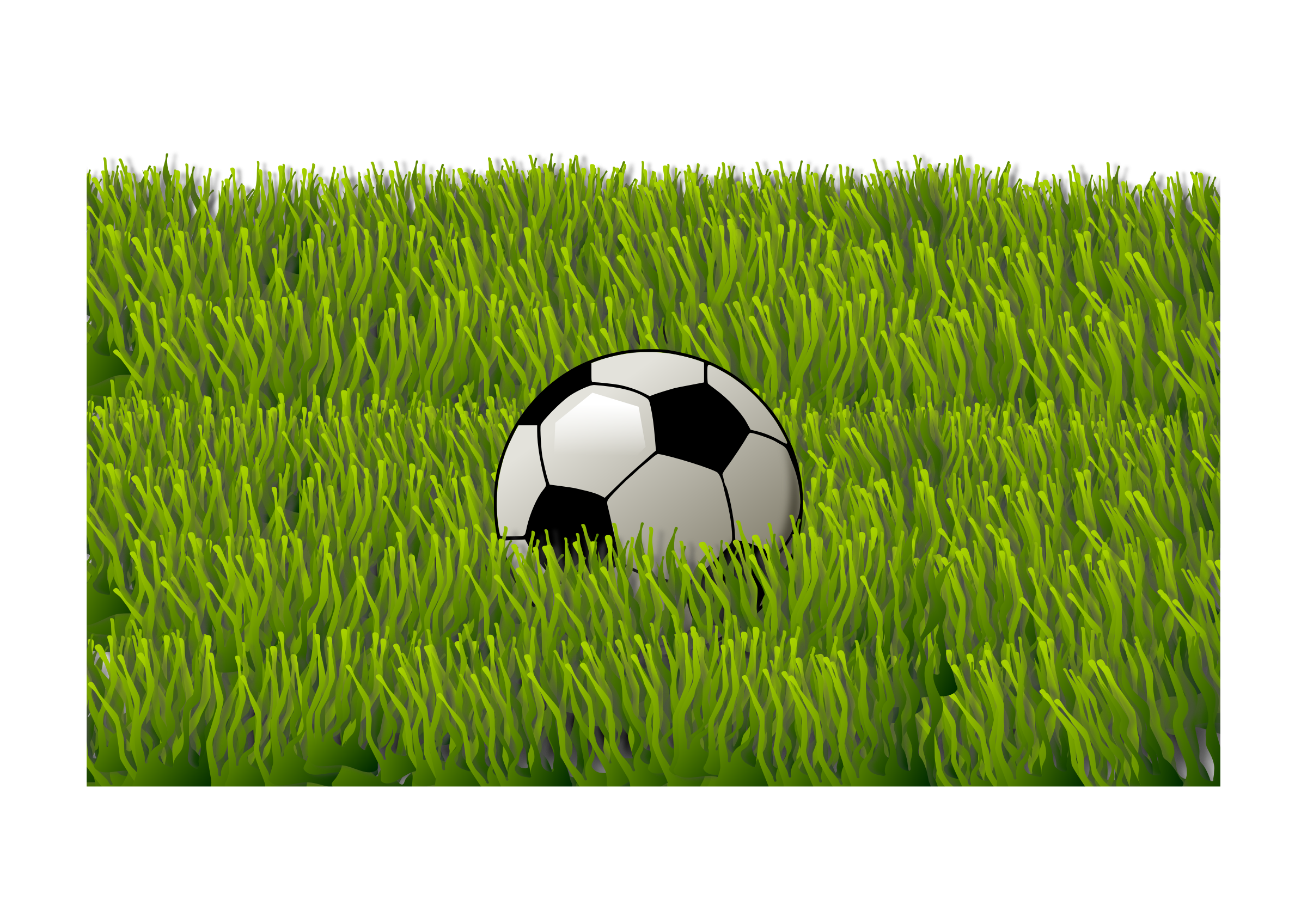 Soccer ball on grass by Almeidah