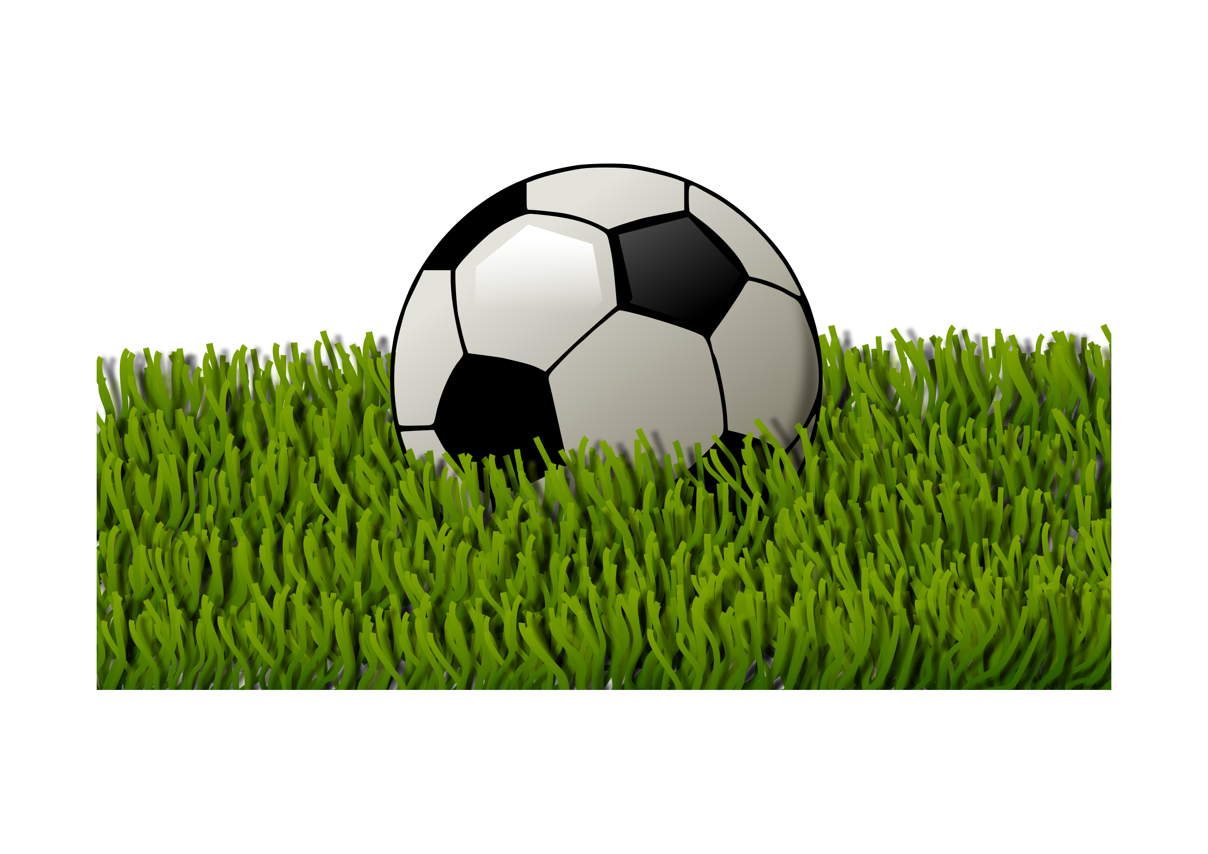 Soccer ball on grass 2 by Almeidah