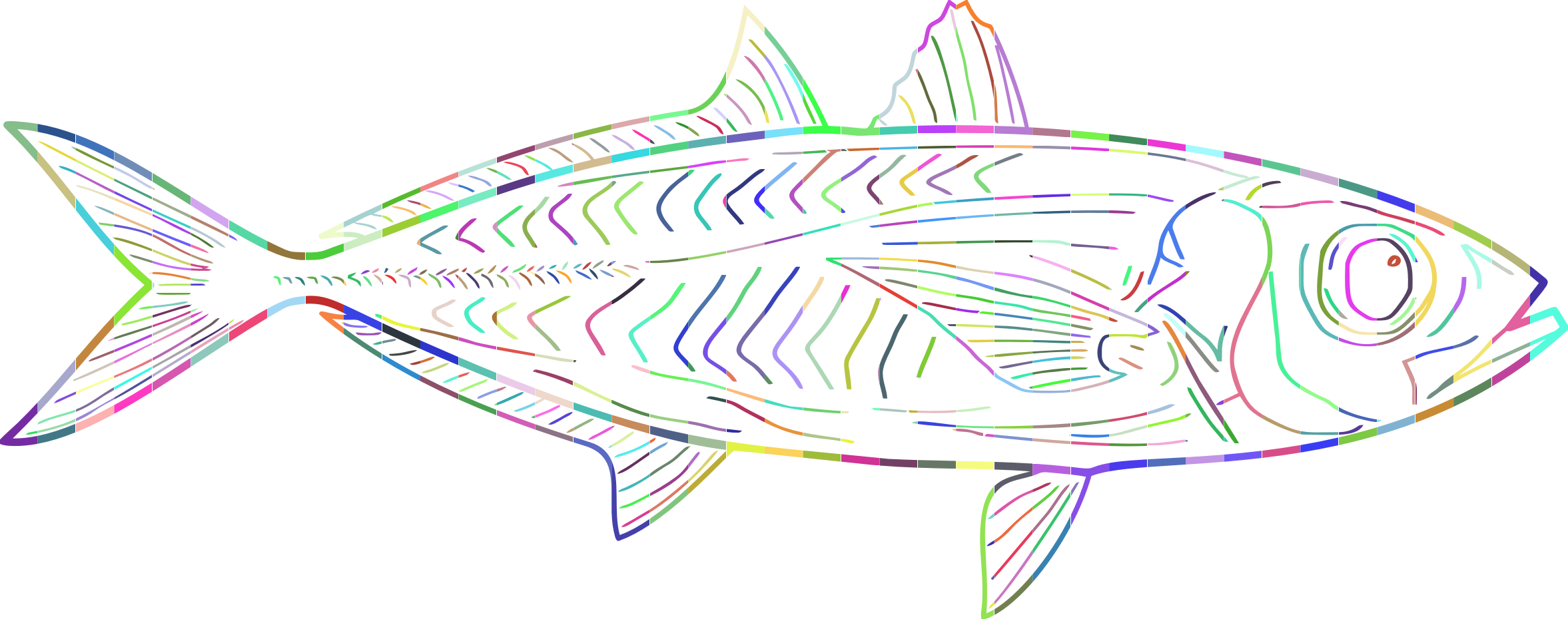 Prismatic Fish Line Art by GDJ