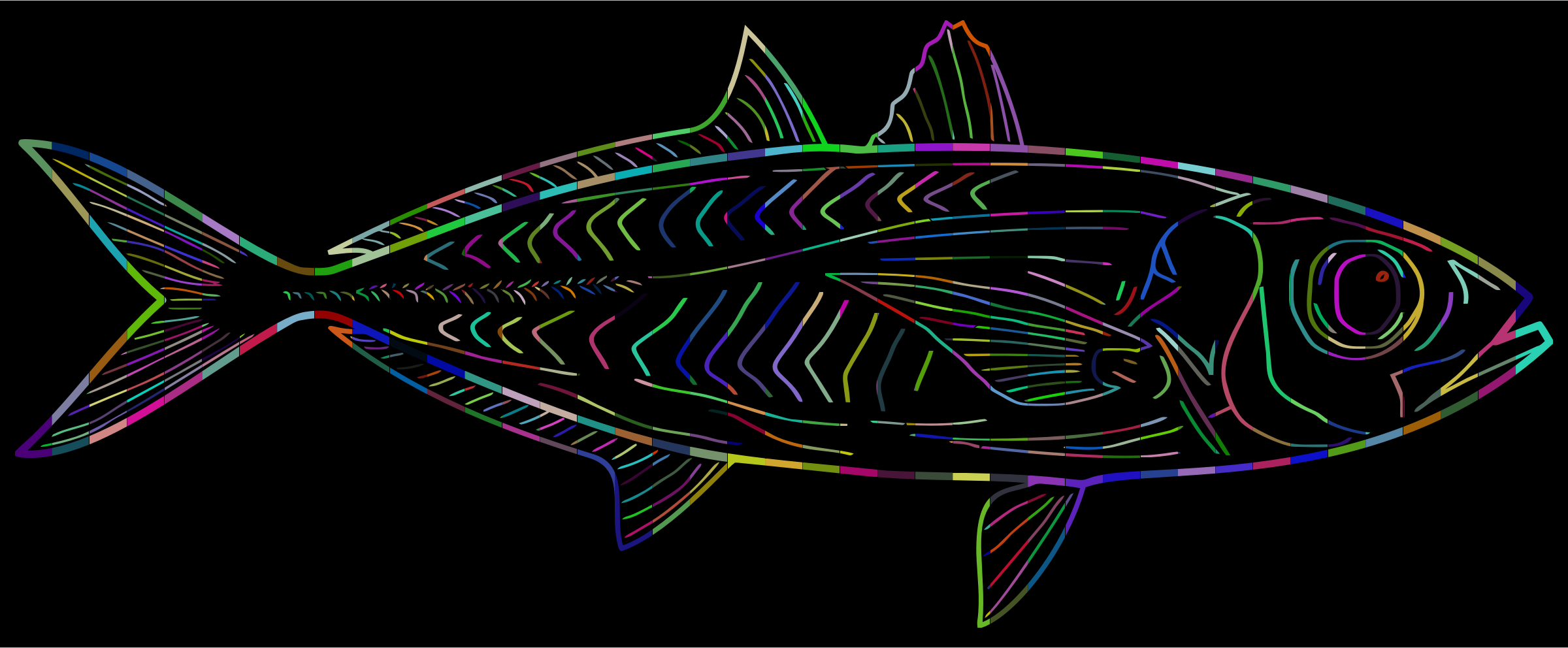 Prismatic Fish Line Art With Background by GDJ