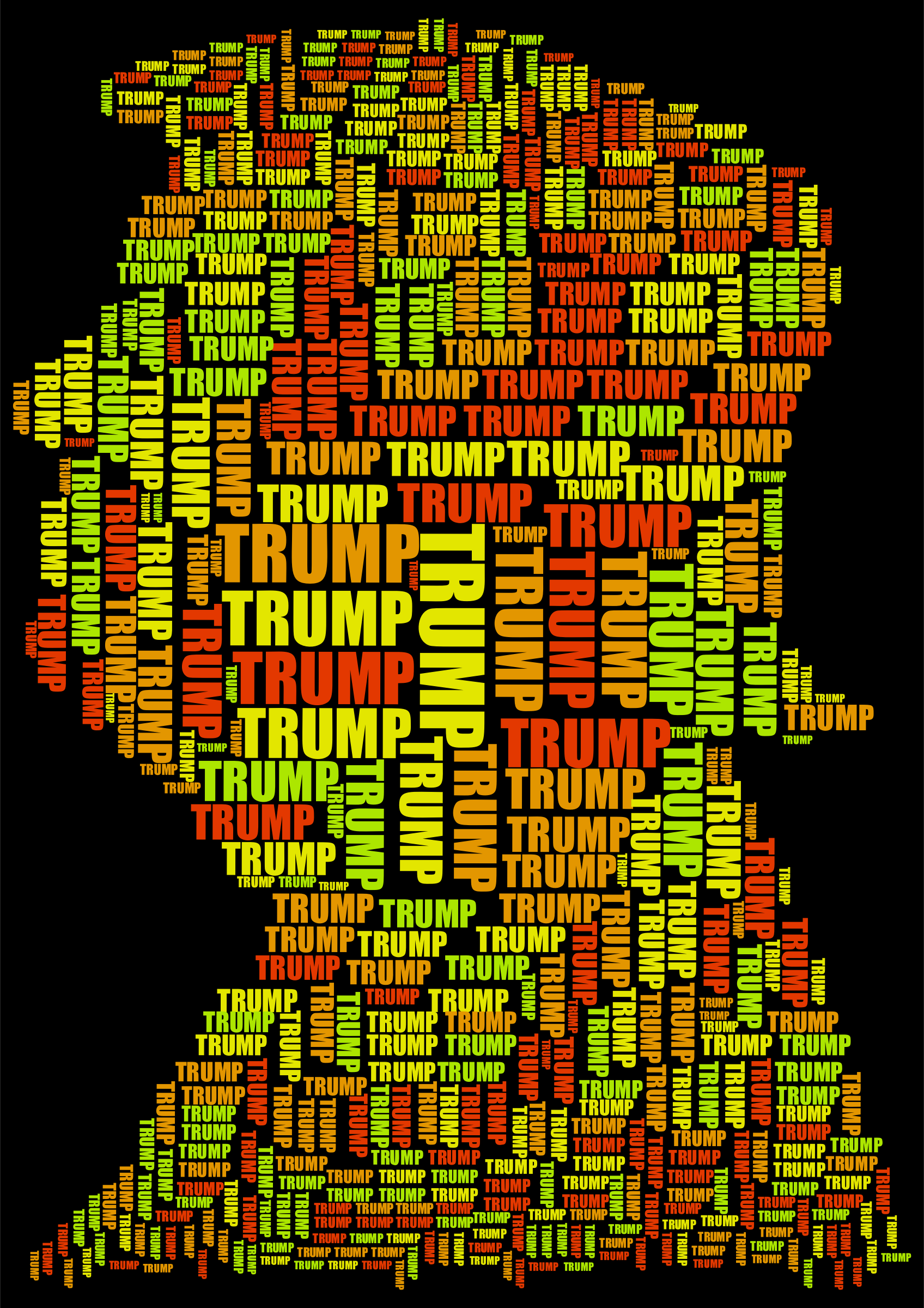 Trump Profile Word Cloud by GDJ