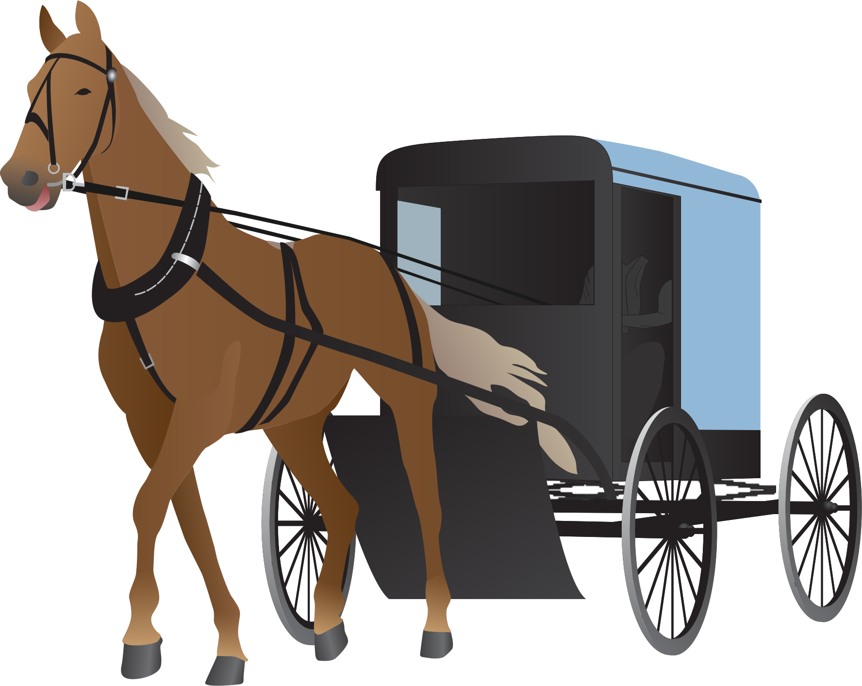Amish Buggy and Horse by bnsonger47