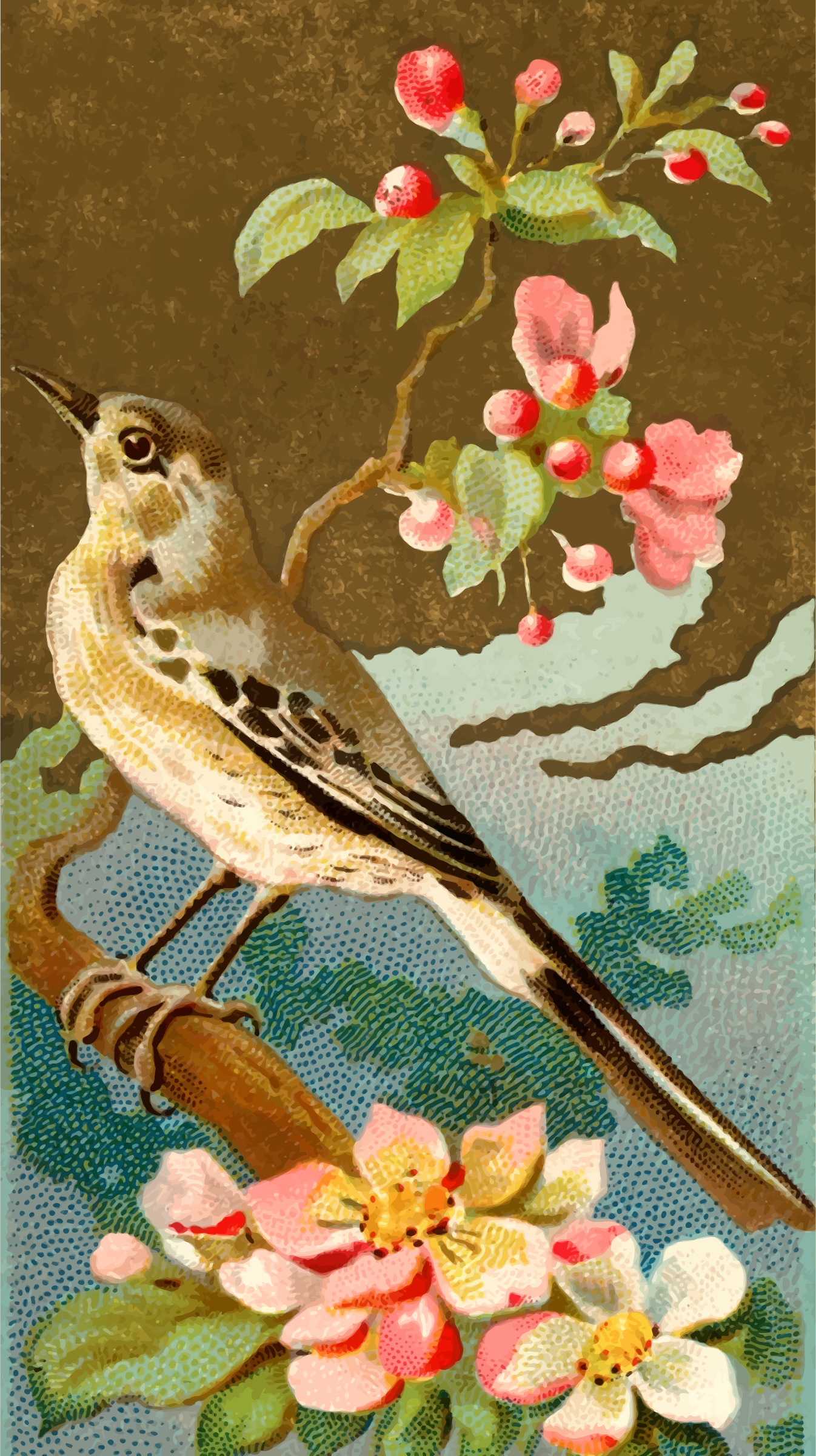 Cigarette card - Mocking Bird by Firkin