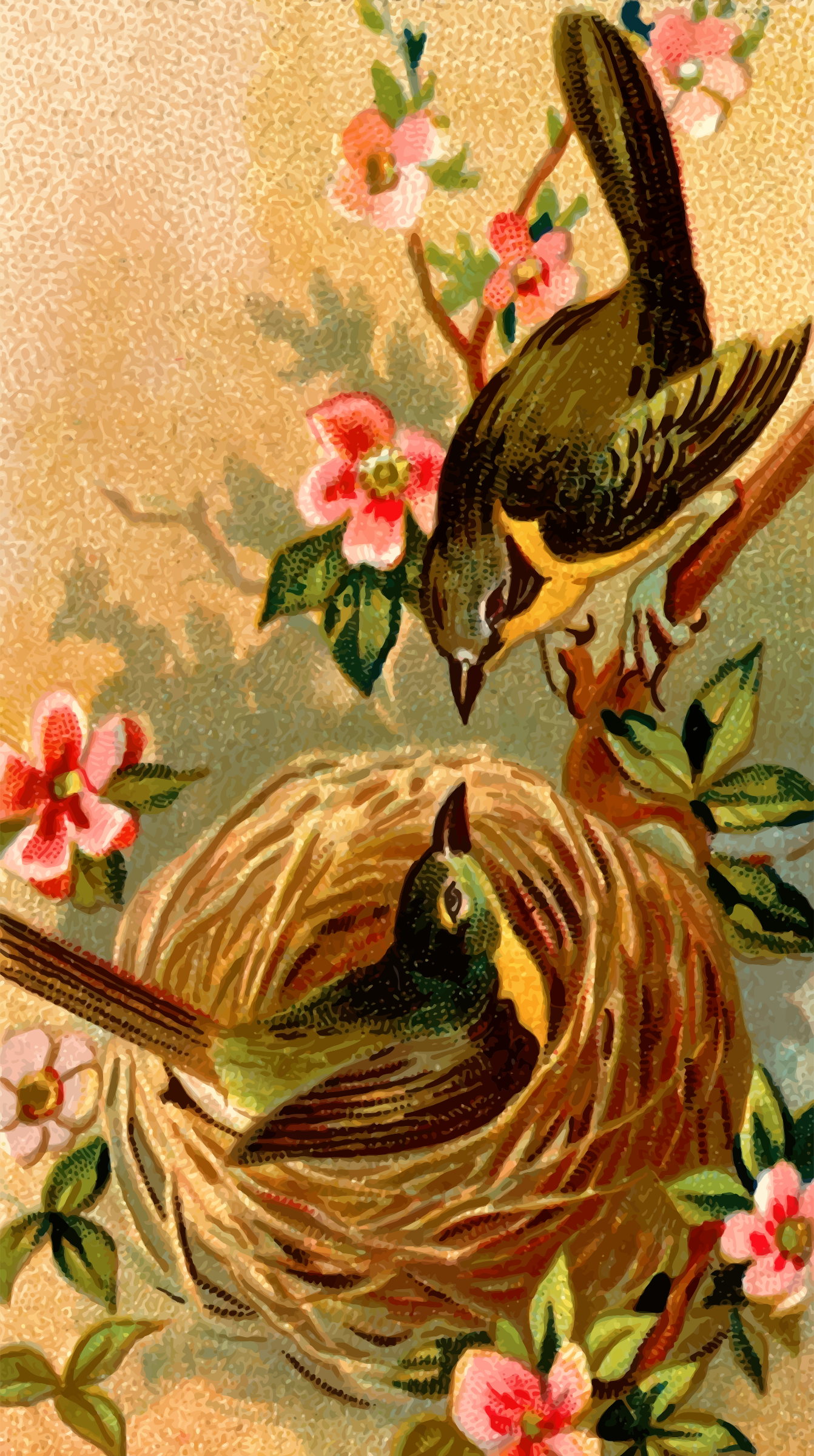 Cigarette card - Yellow-Breasted Chat by Firkin