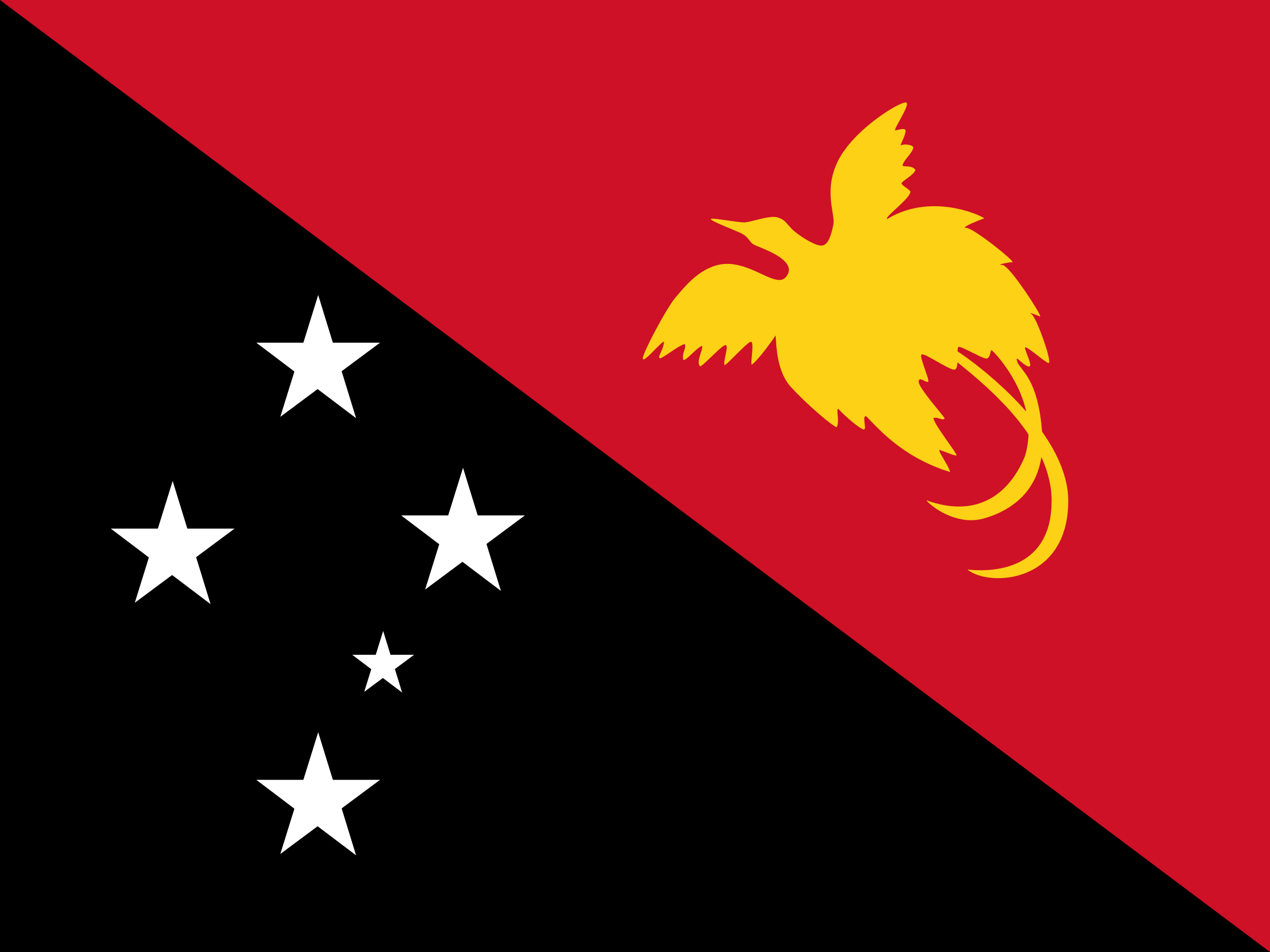 Flag of  Papua New Guinea by Clon