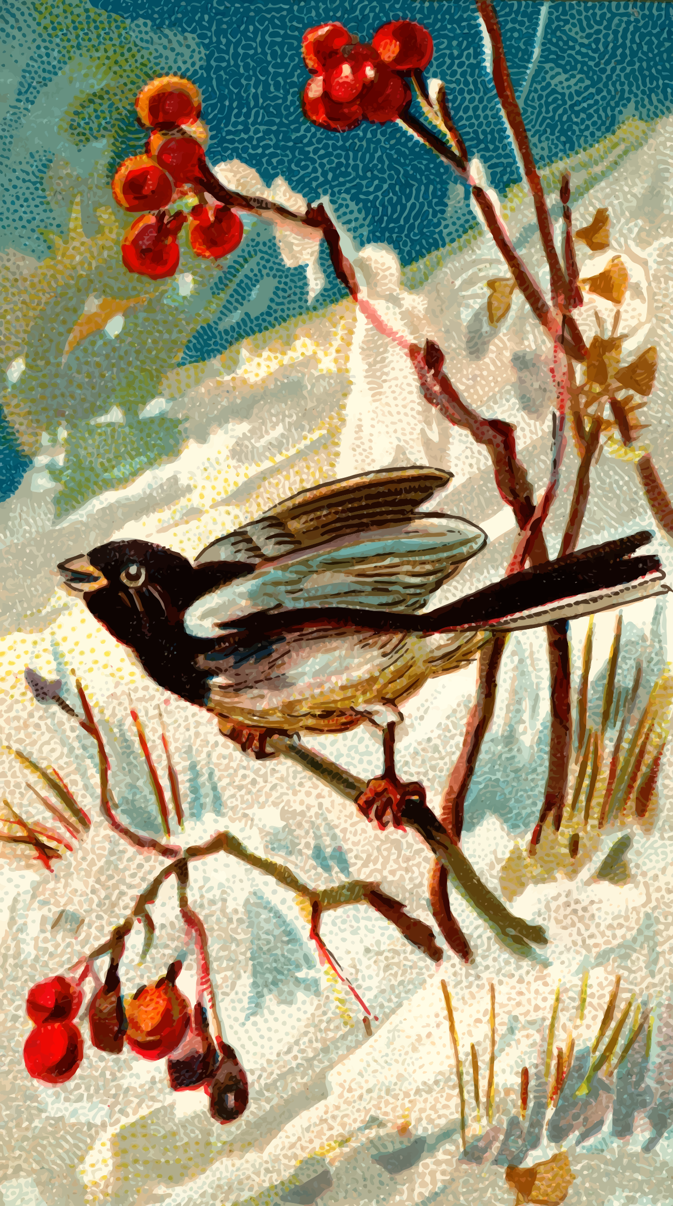 Cigarette card - Snow bird by Firkin