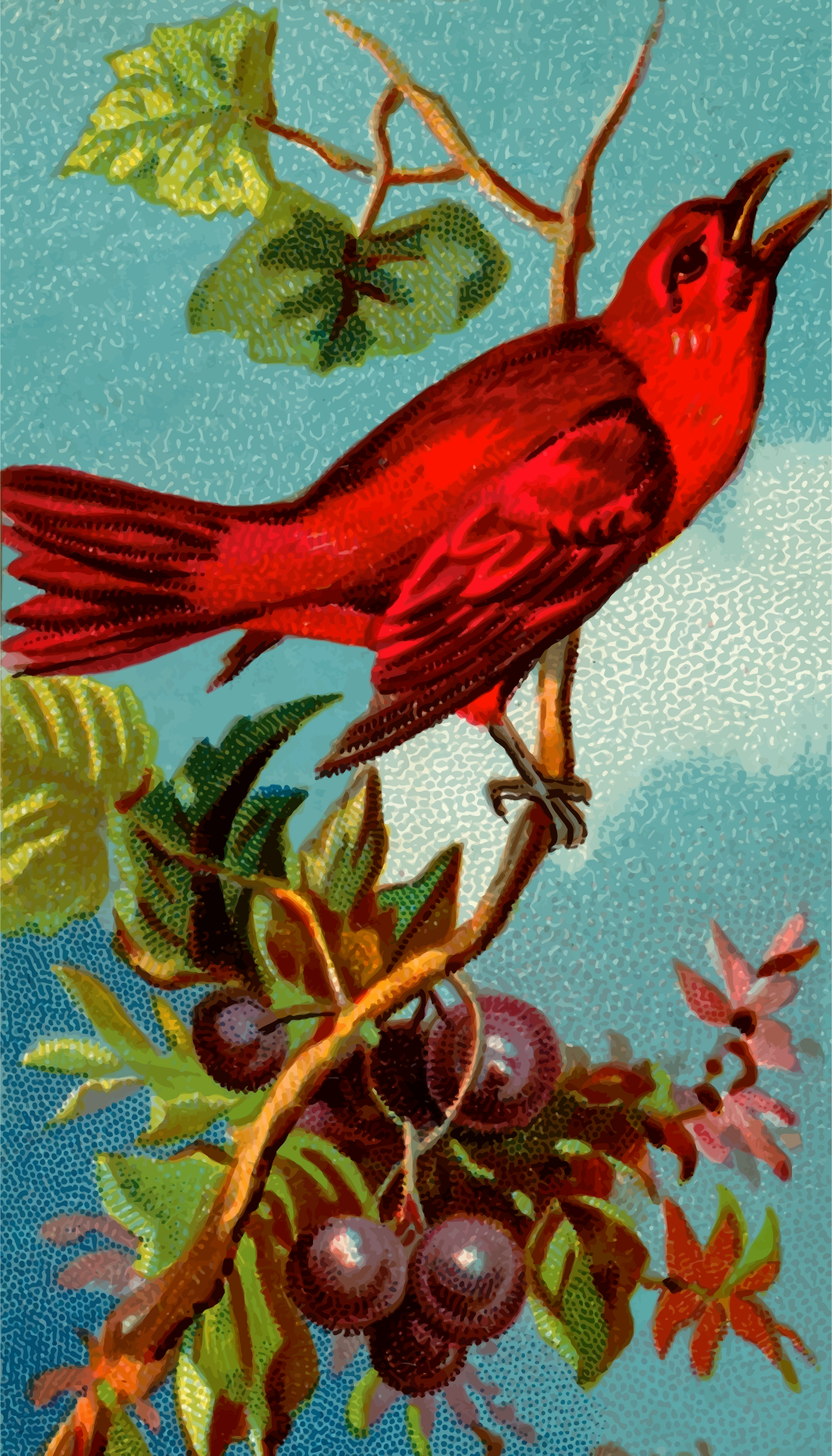 Cigarette card - Redbird by Firkin