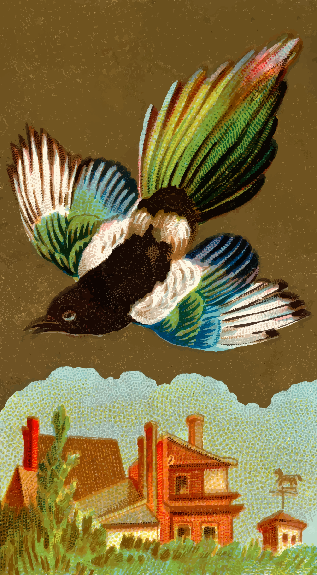 Cigarette card - Magpie by Firkin
