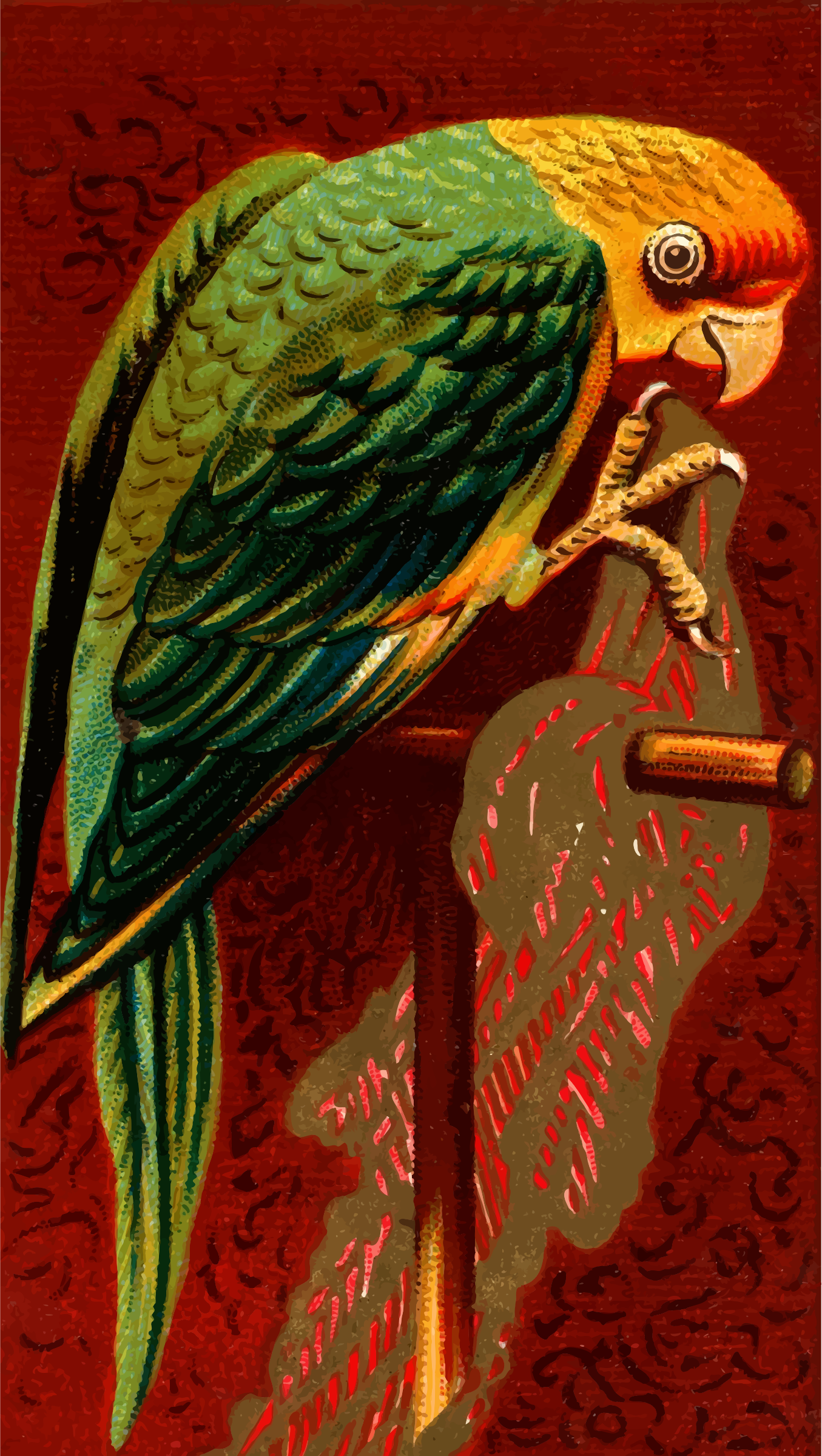 Cigarette card - Carolina Parrot by Firkin