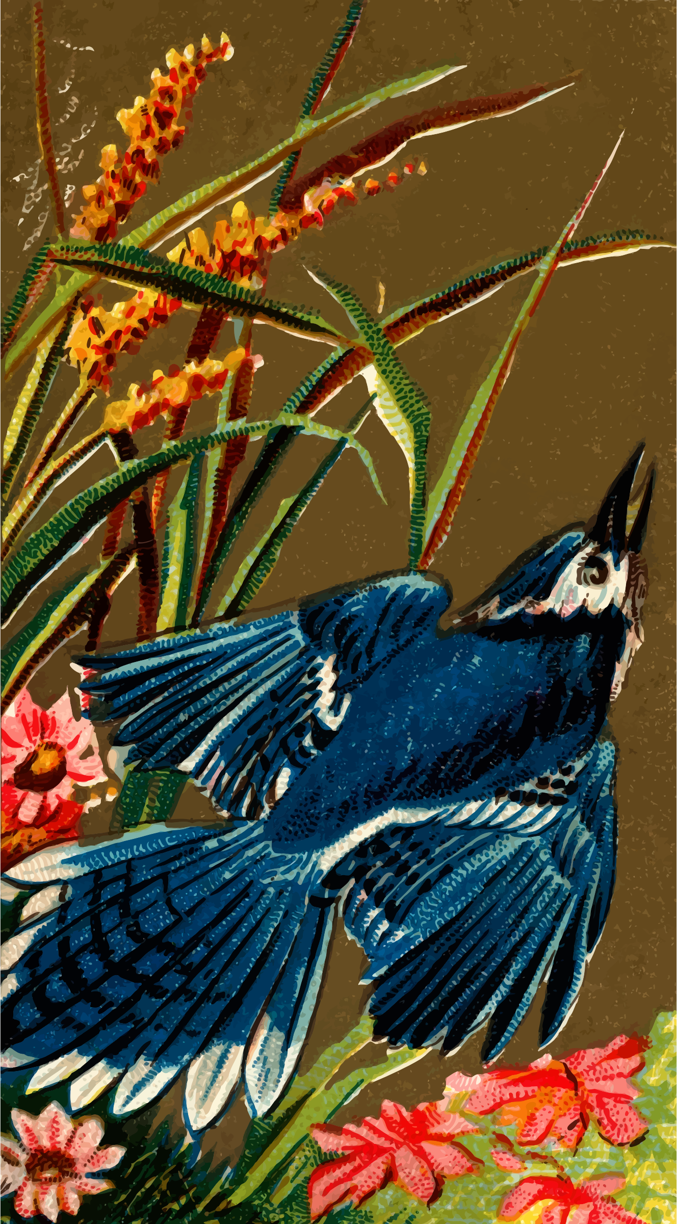Cigarette card - Blue Jay by Firkin