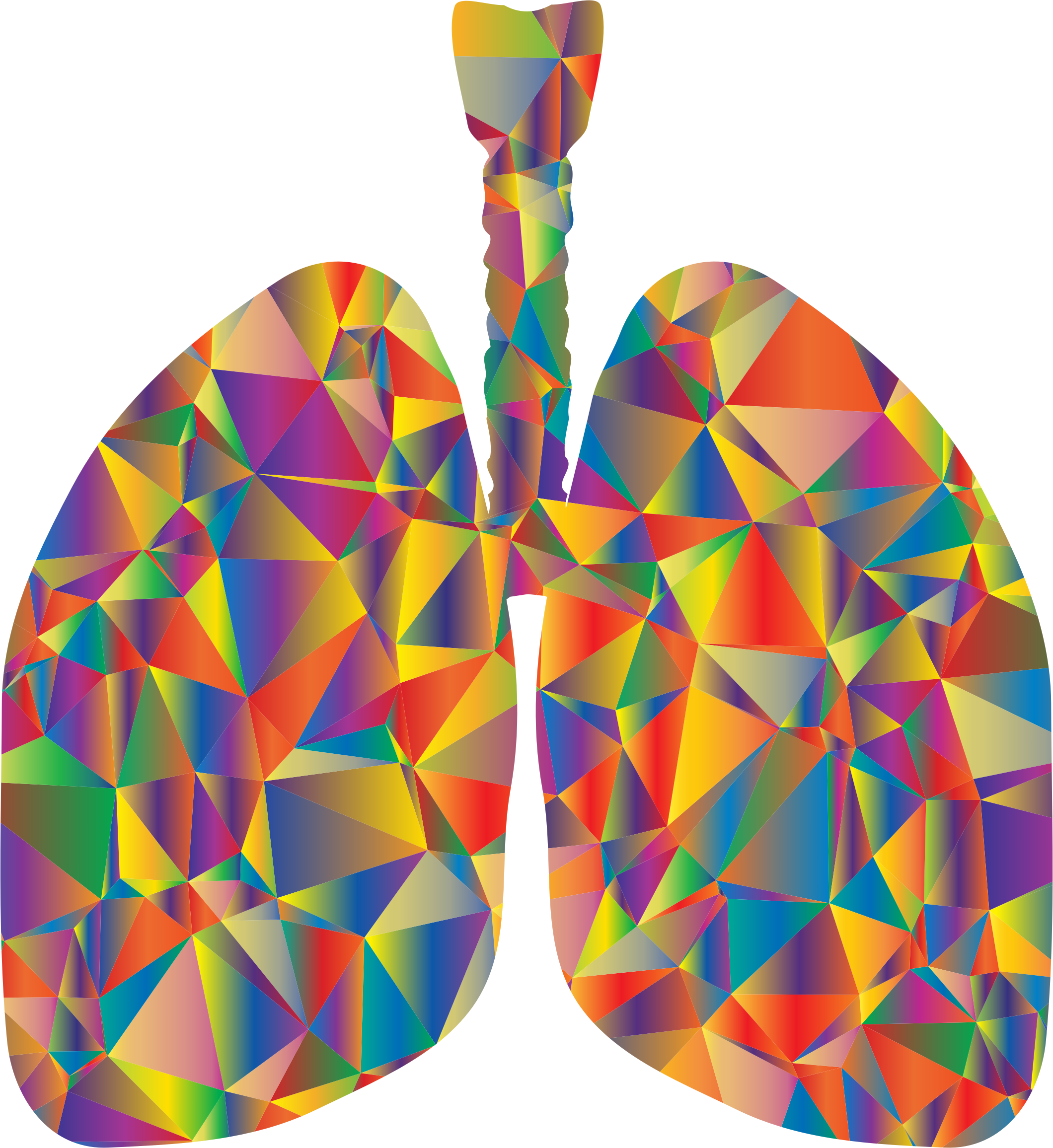 Prismatic Low Poly Lungs Silhouette by GDJ