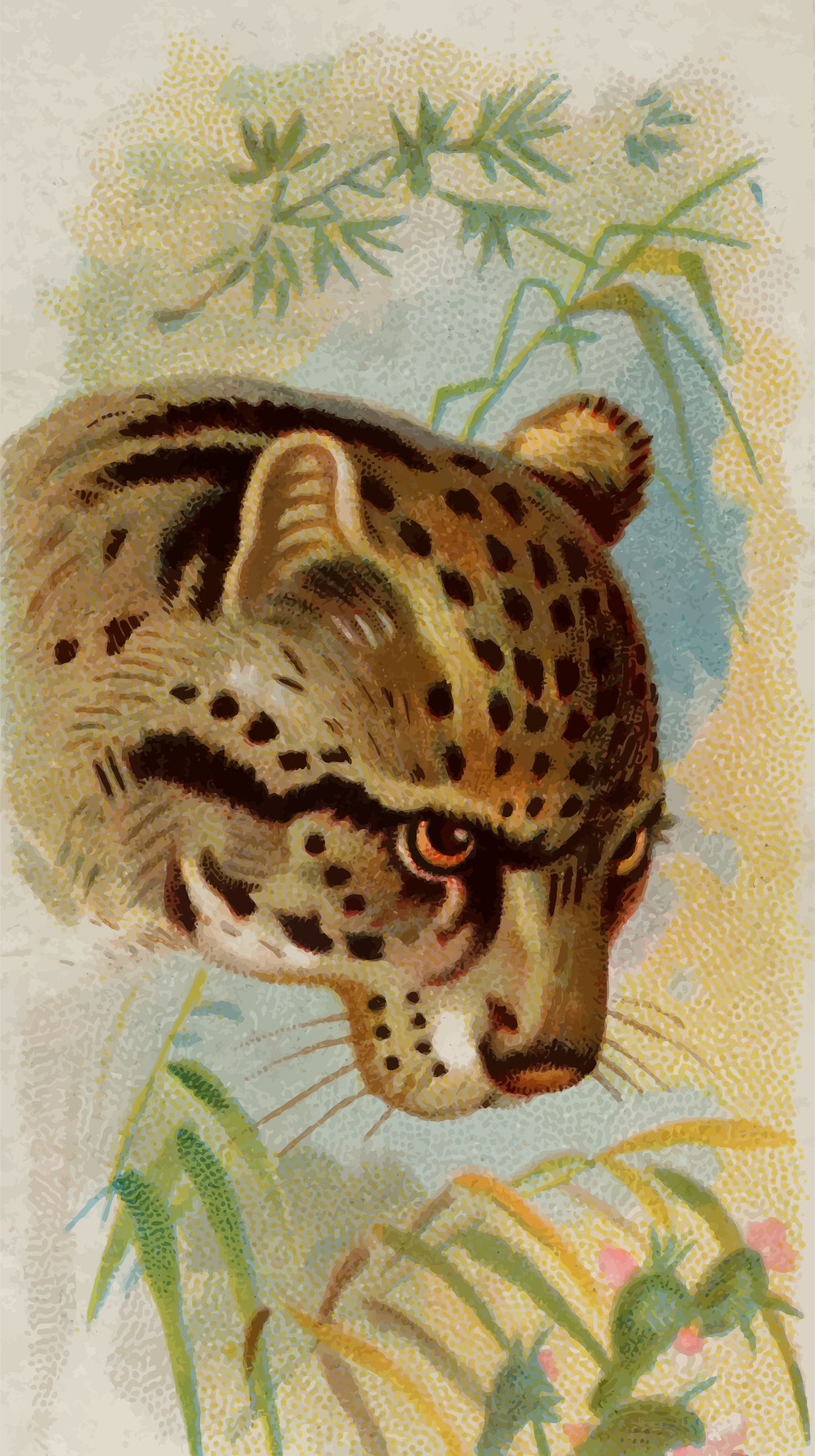 Cigarette card - Painted ocelot by Firkin