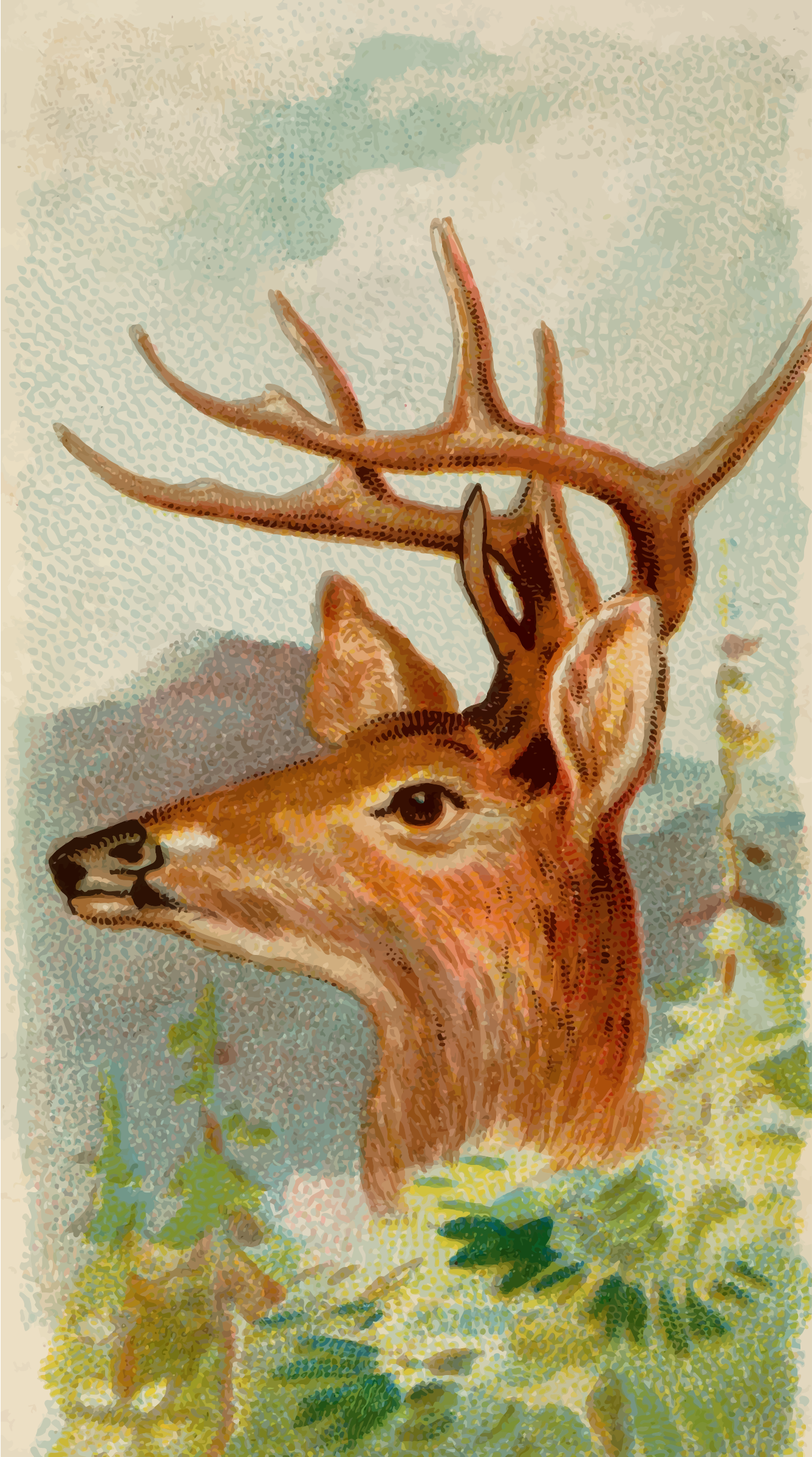 Cigarette card - Virginian deer by Firkin
