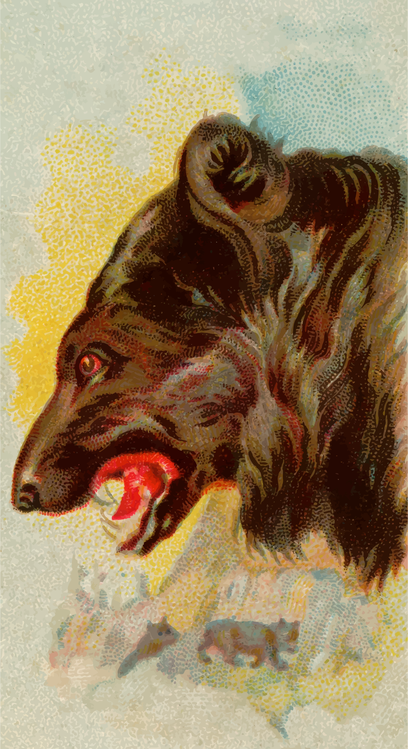 Cigarette card - Black bear by Firkin