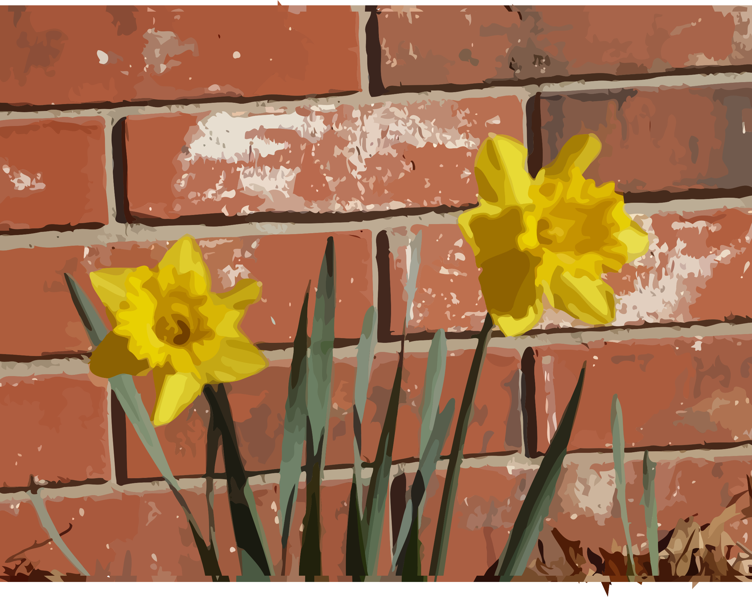 daffodils-03 by datteber