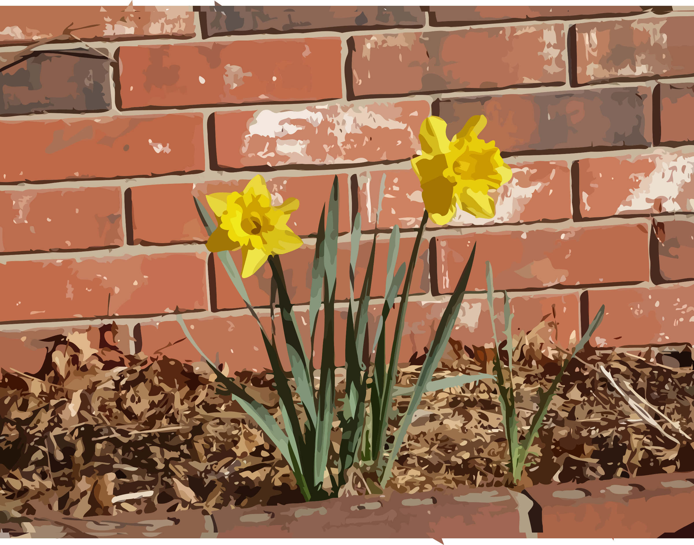 daffodils-04 by datteber