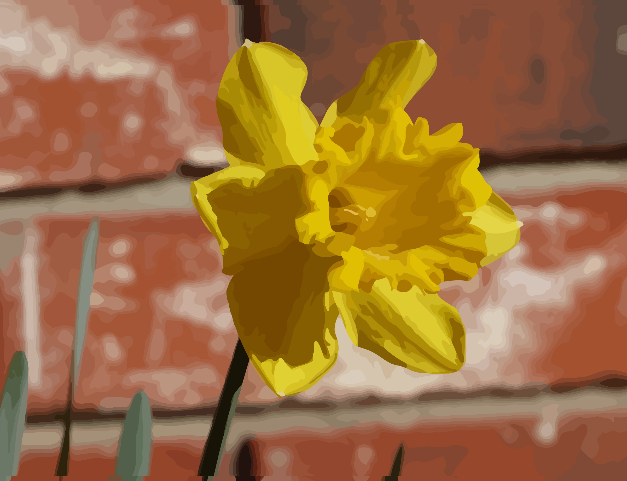 daffodils-05 by datteber