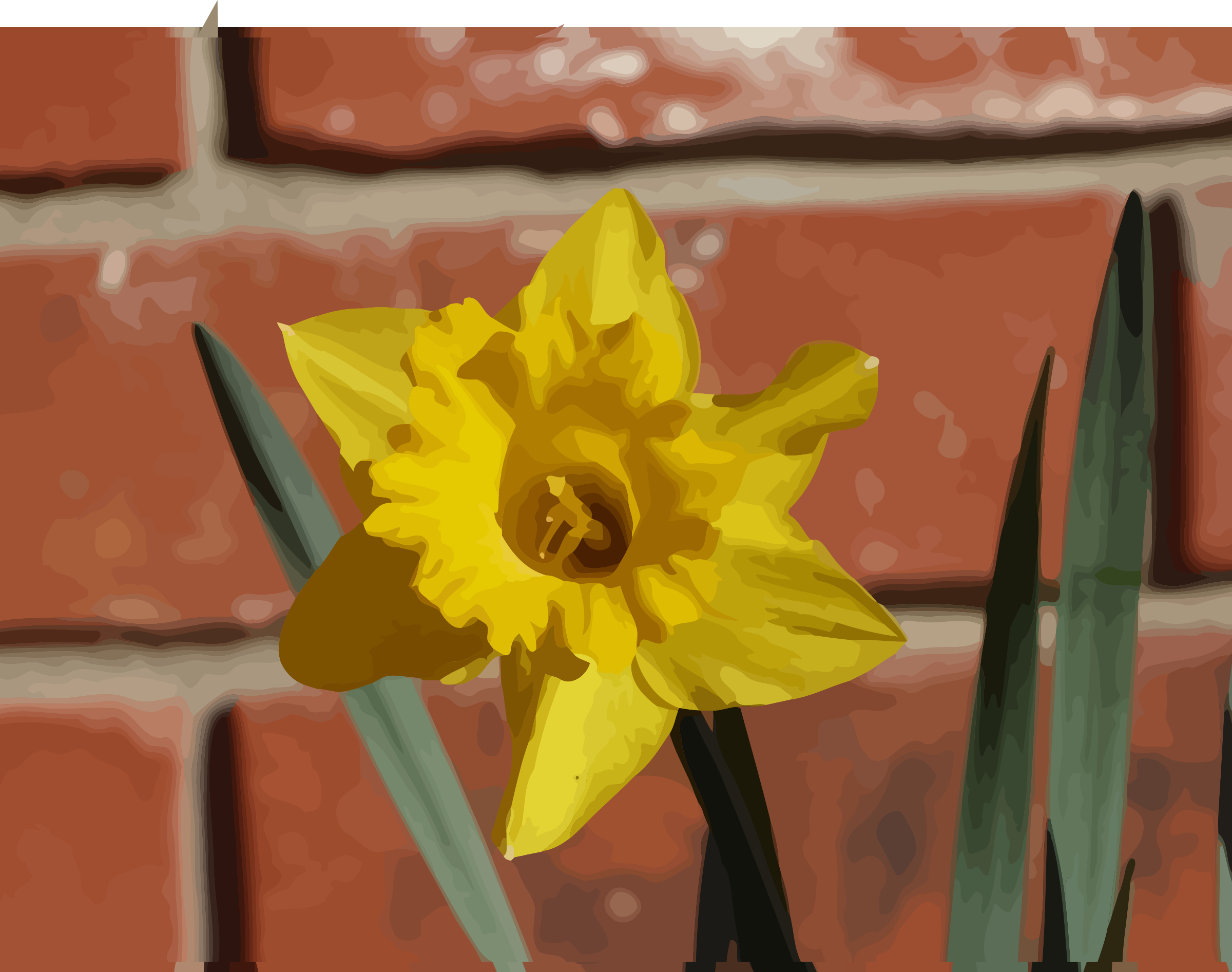 daffodils-06 by datteber