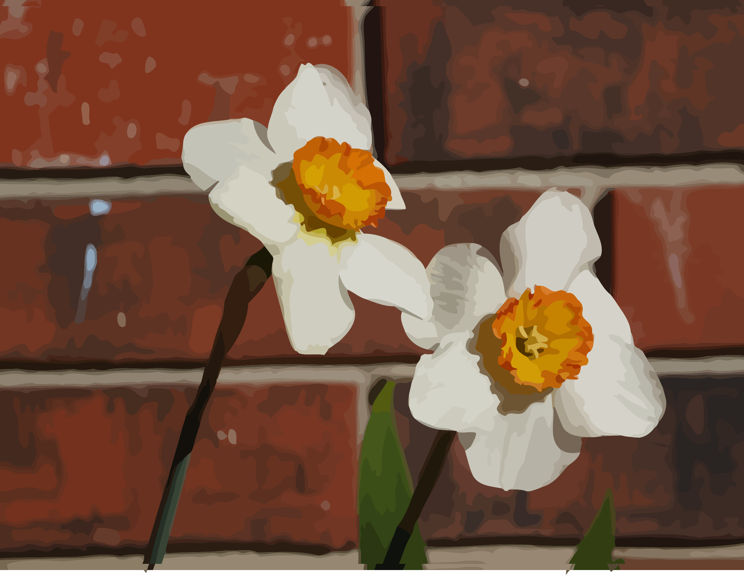 daffodils-09 by datteber