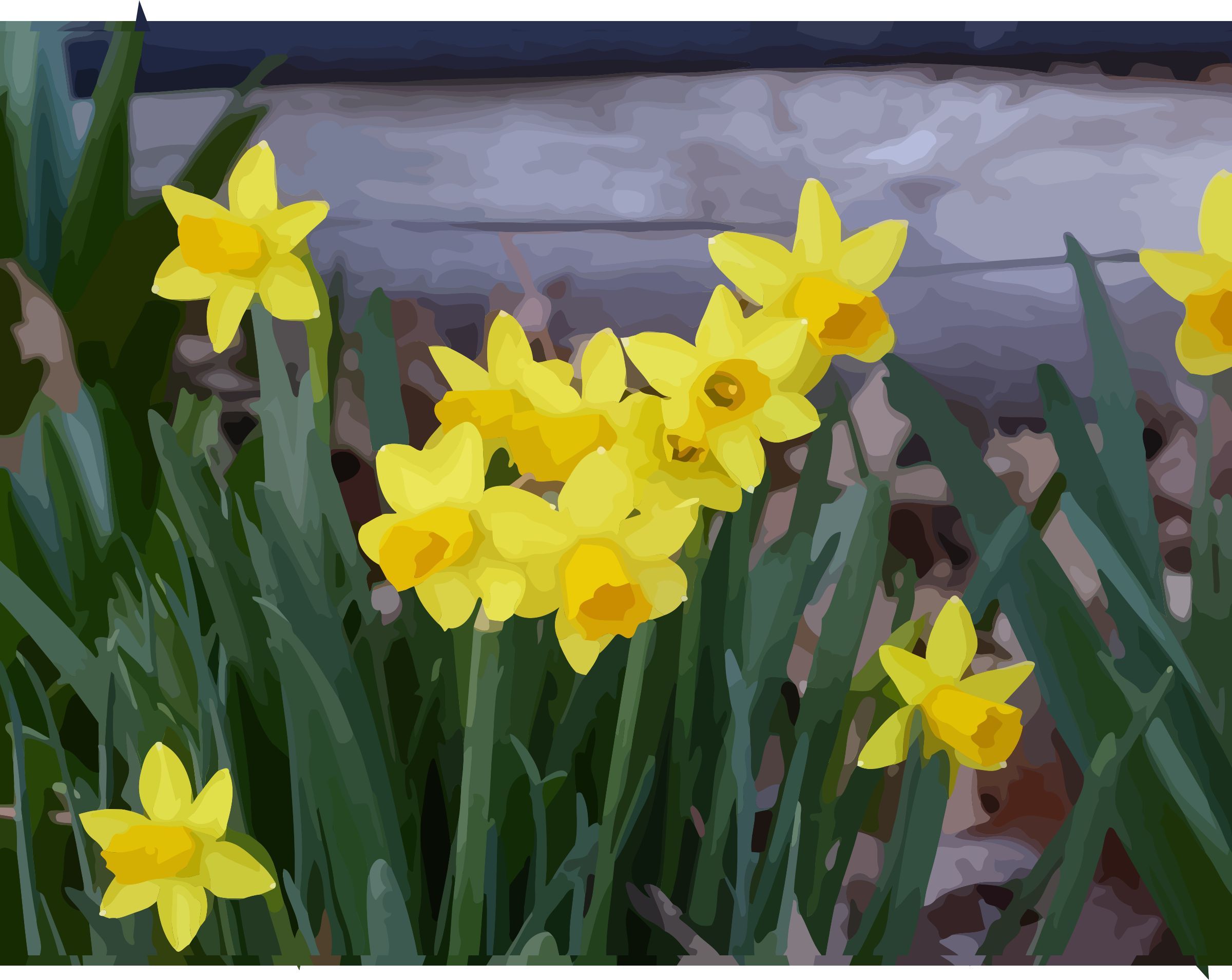 daffodils-15 by datteber
