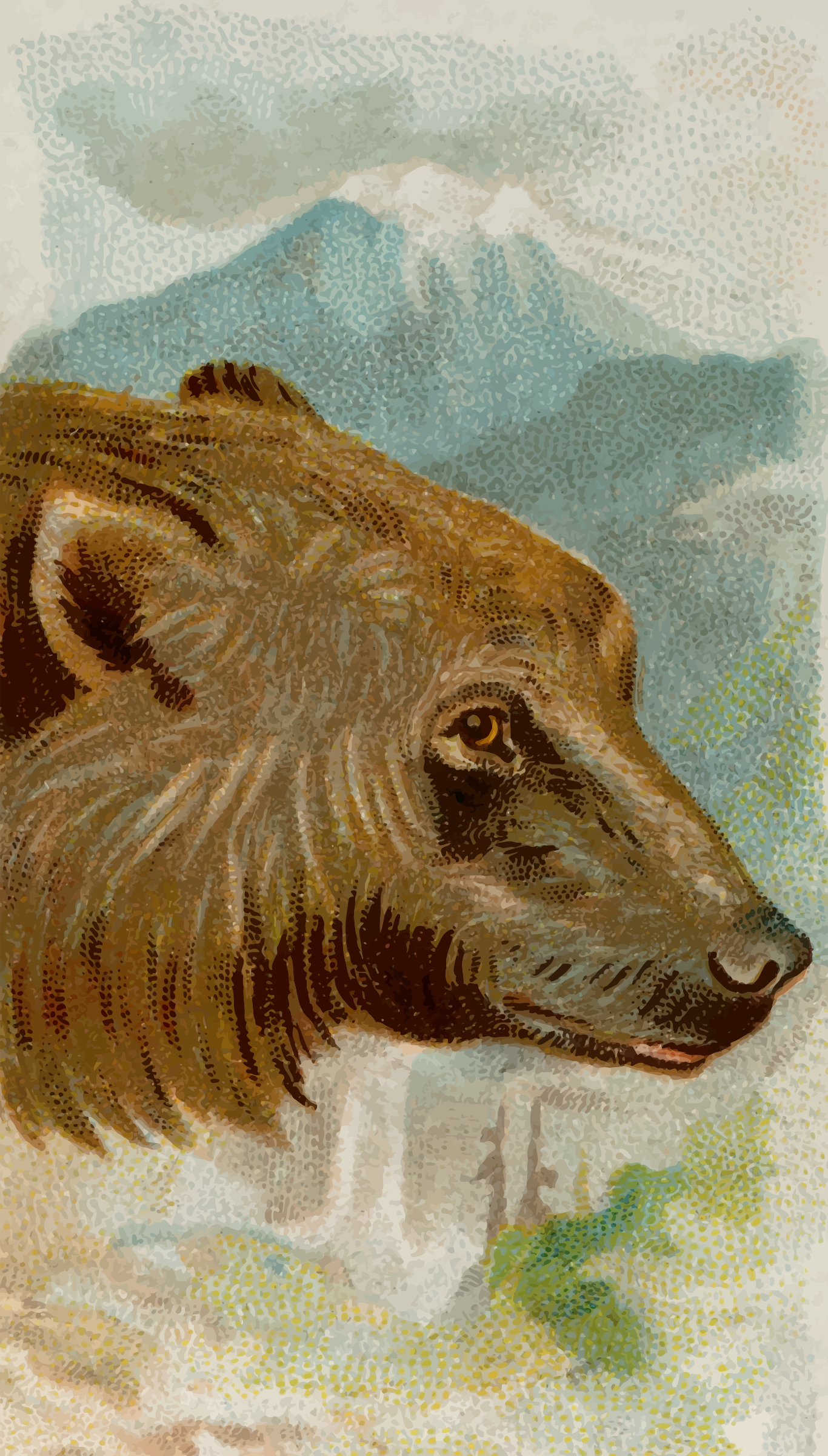 Cigarette card - Grizzly bear by Firkin
