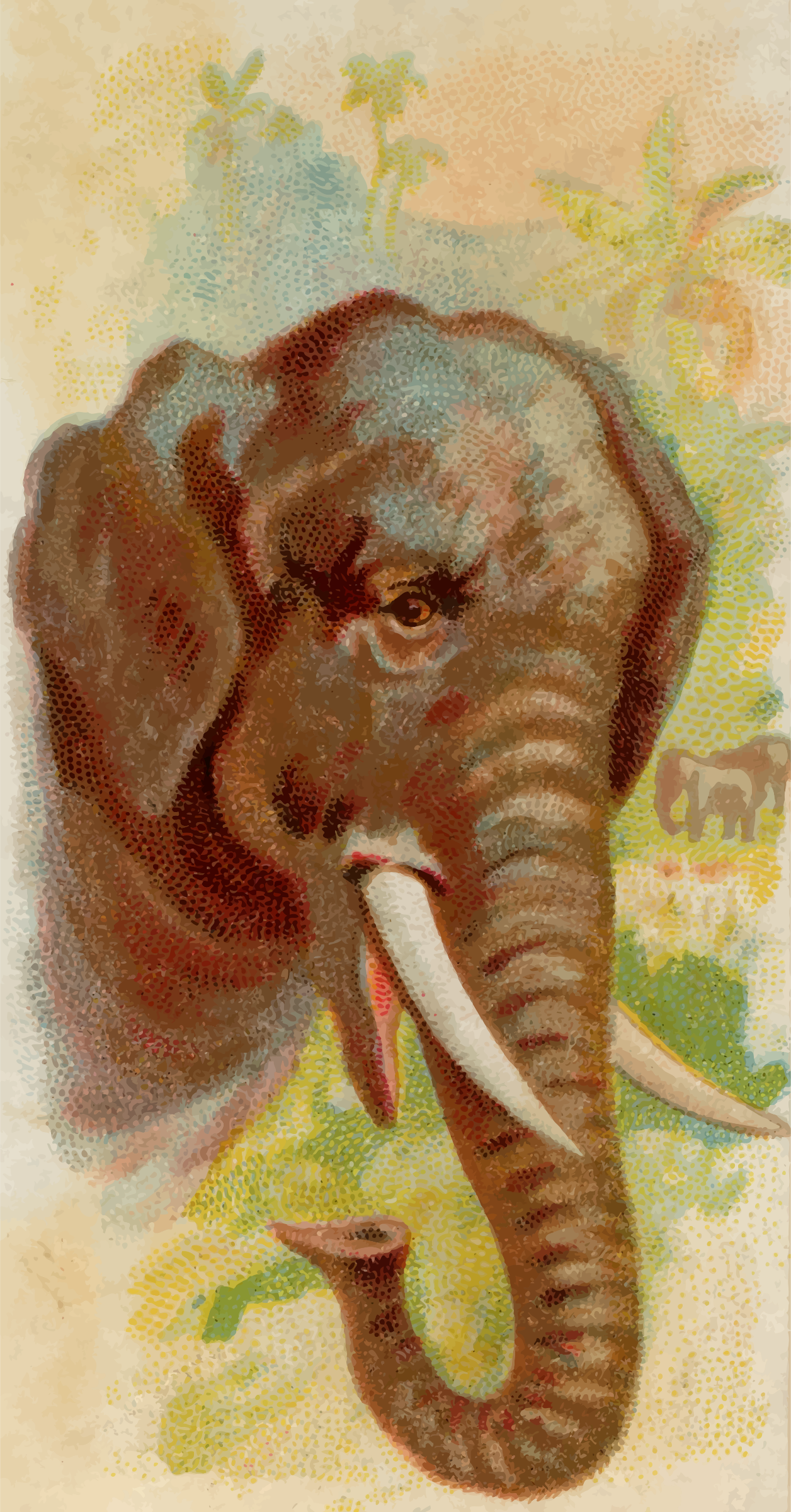Cigarette card - Elephant by Firkin