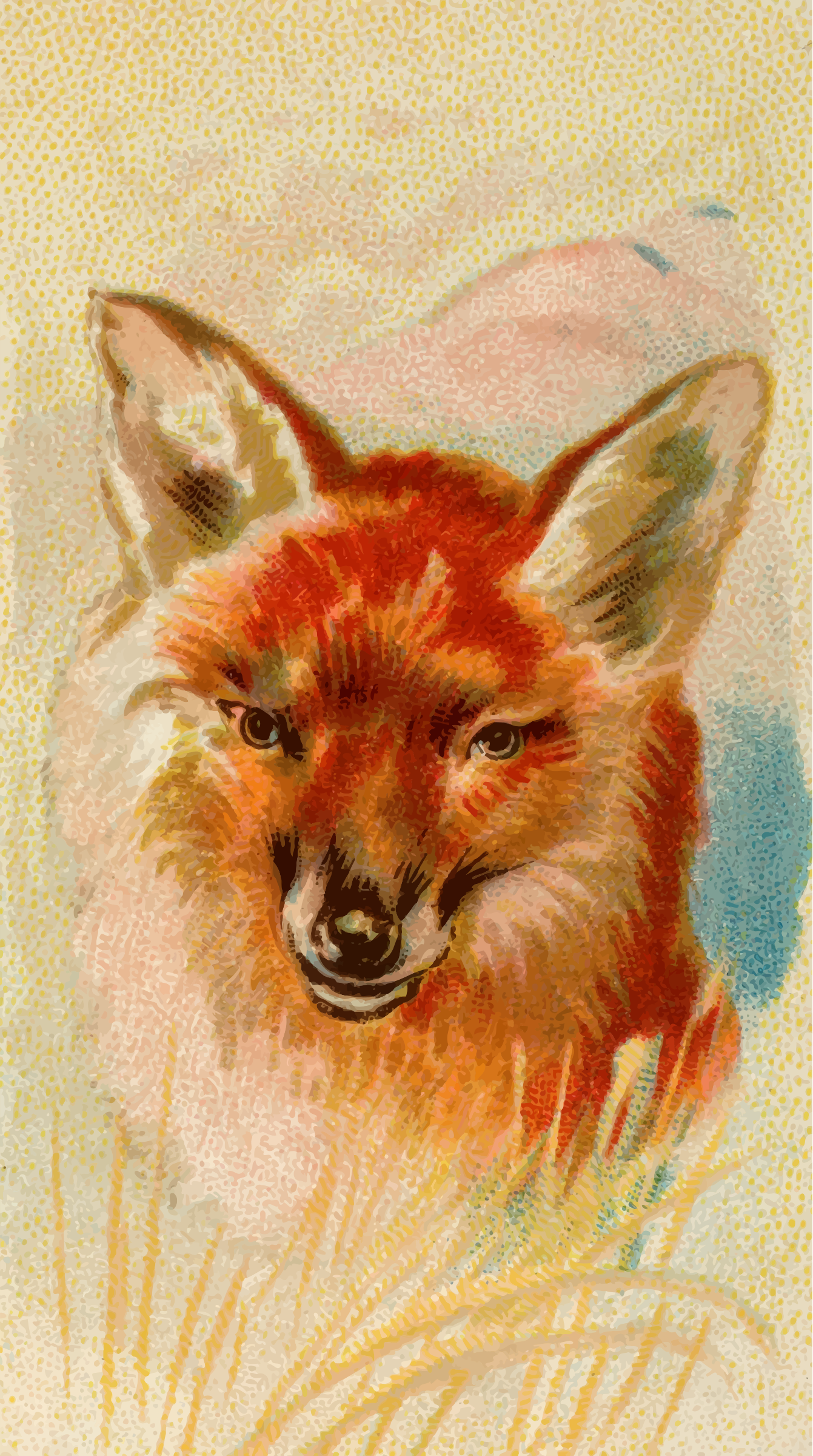 Cigarette card - Red fox by Firkin