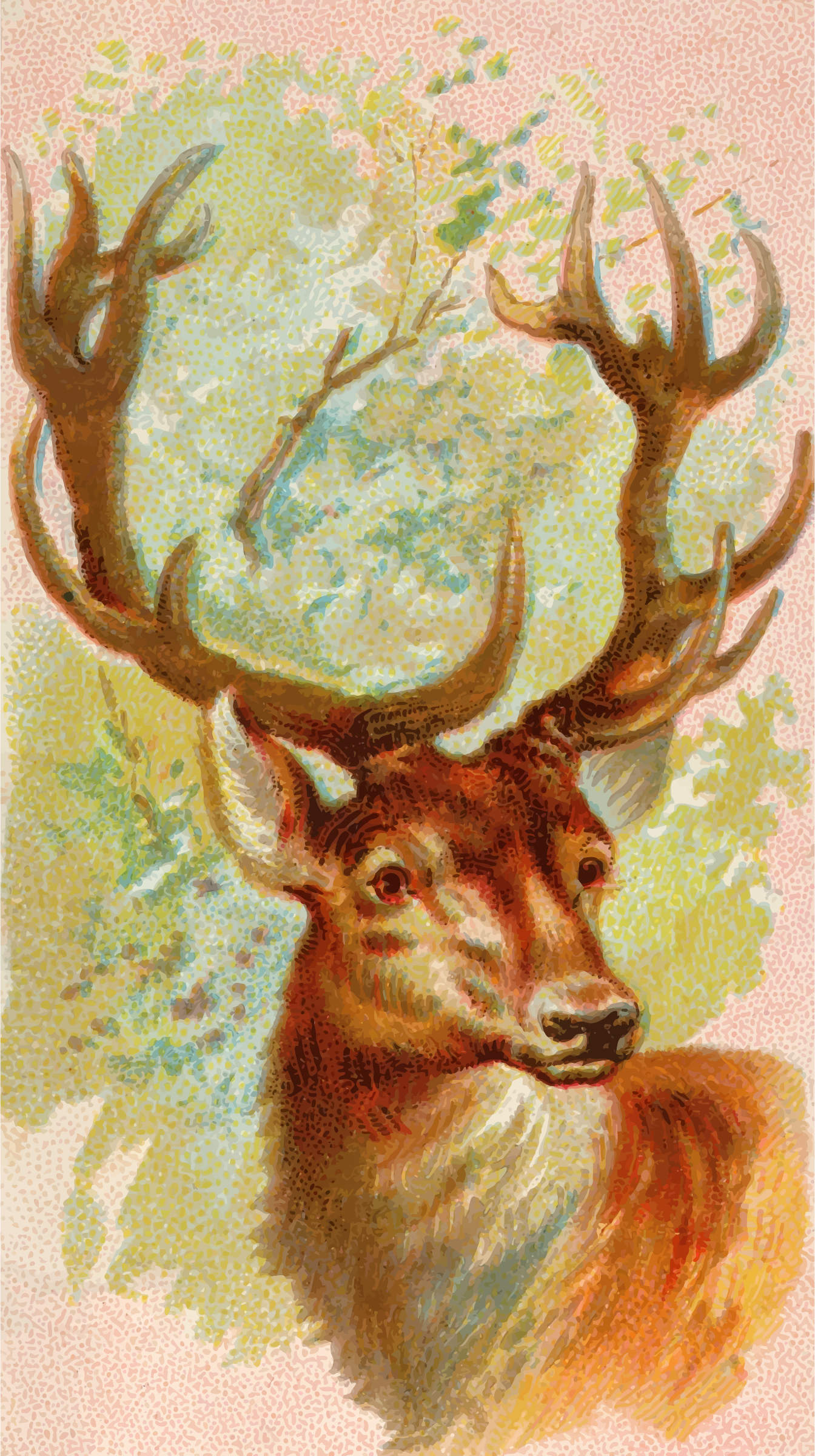 Cigarette card - Stag by Firkin