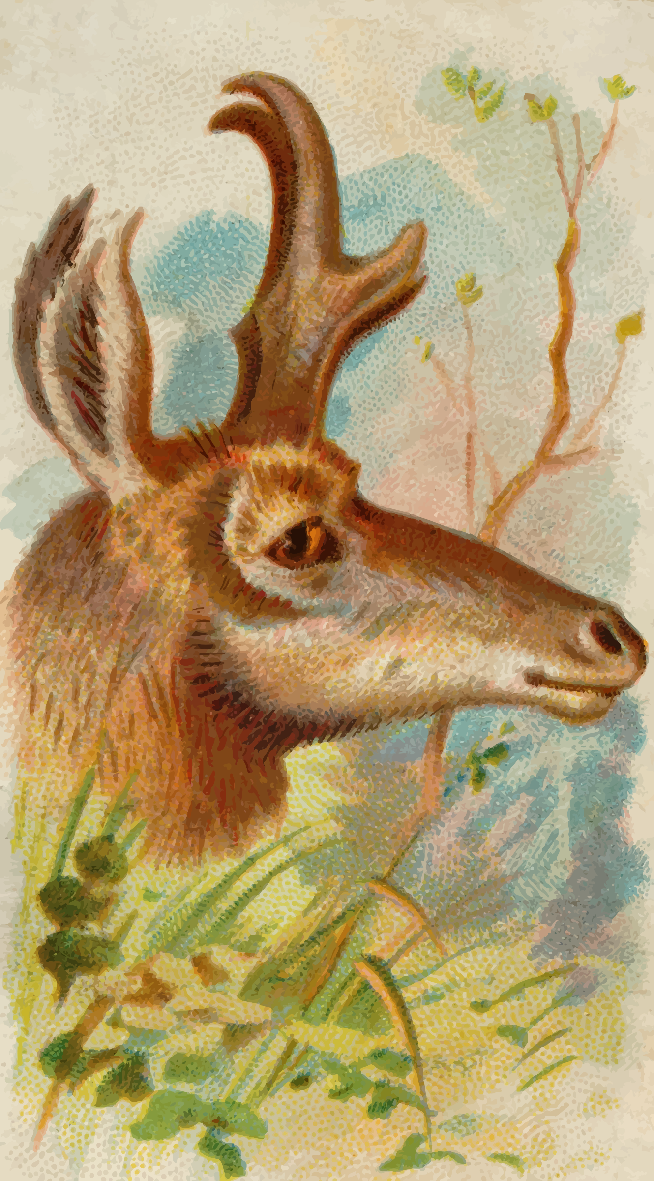 Cigarette card - Prong-horn antelope by Firkin
