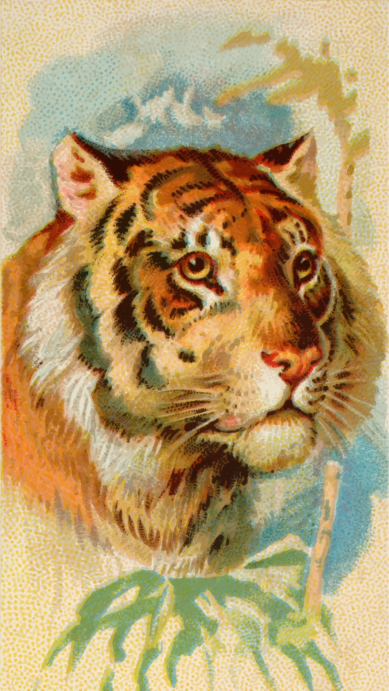 Cigarette card - Tiger by Firkin