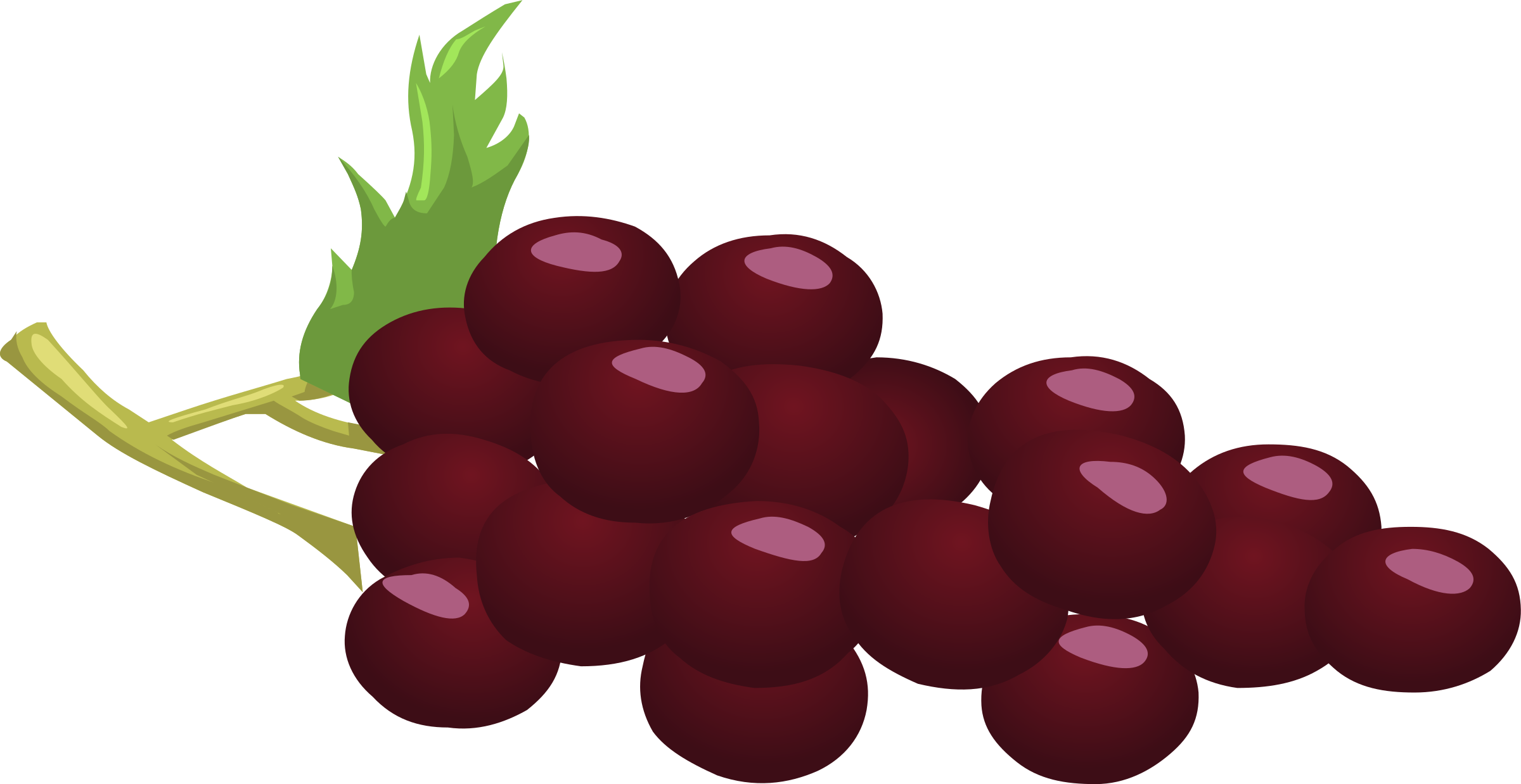 Grapes by anarres