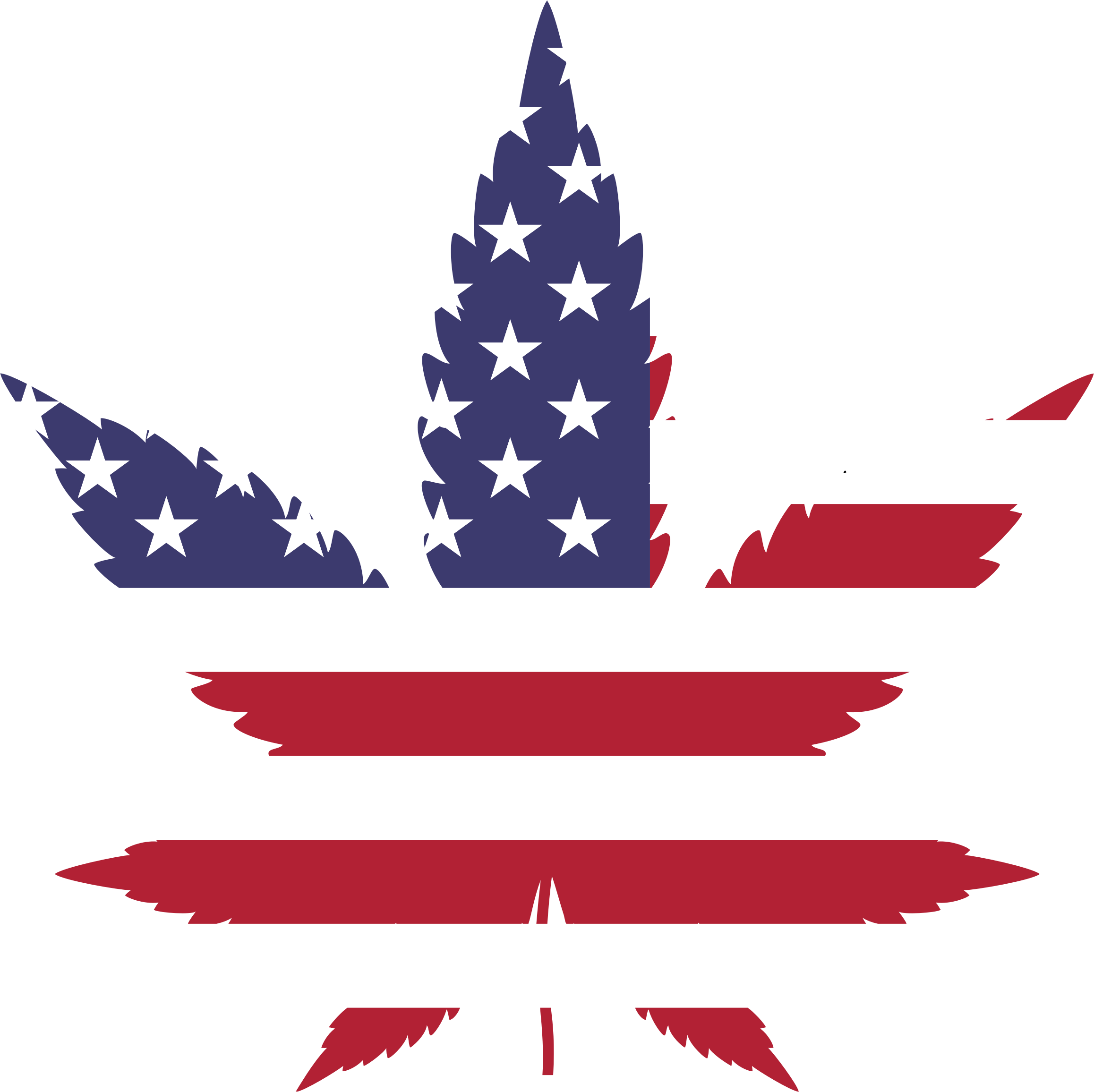 Marijuana American Flag by GDJ