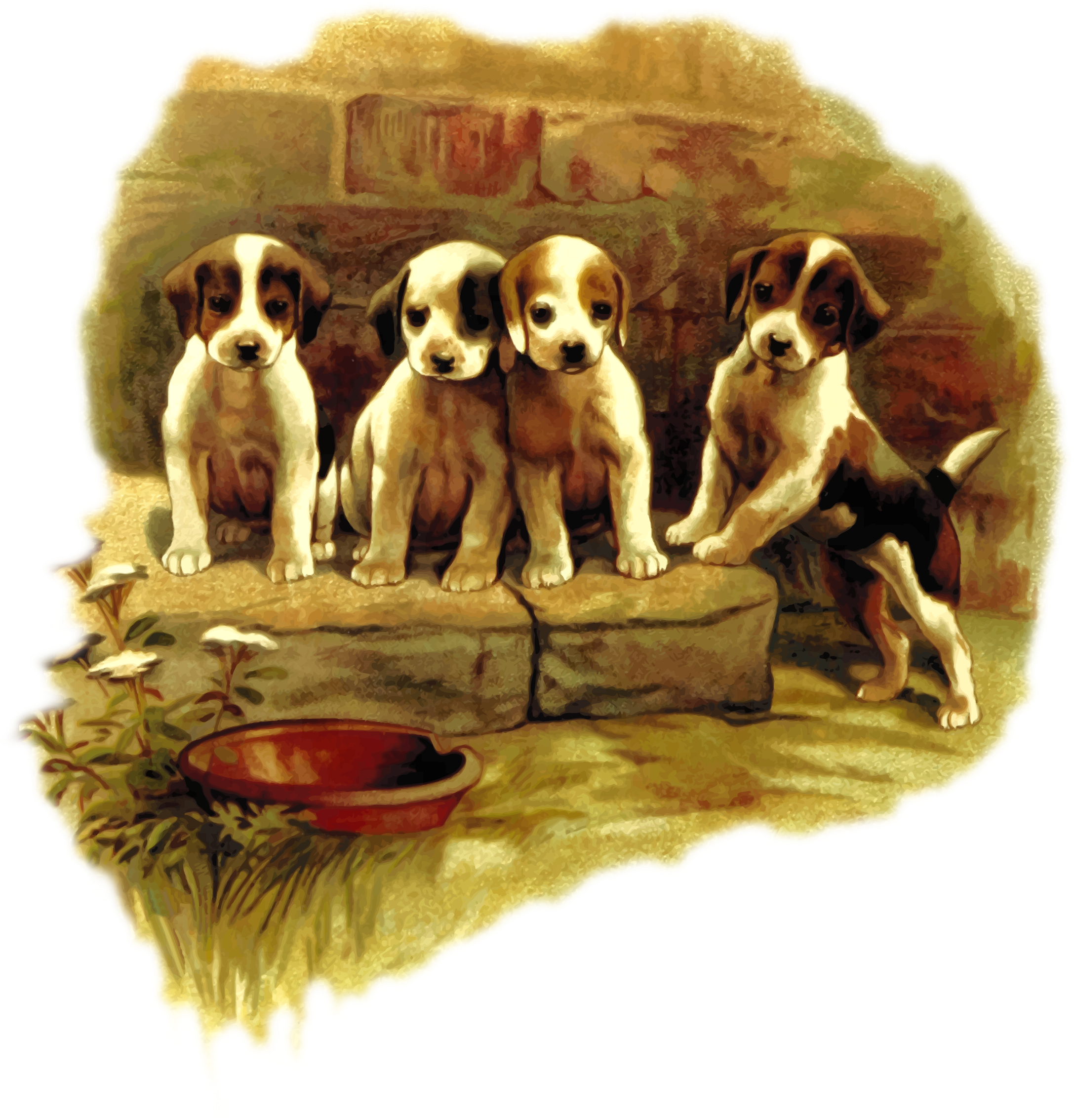 Cute dogs by Firkin