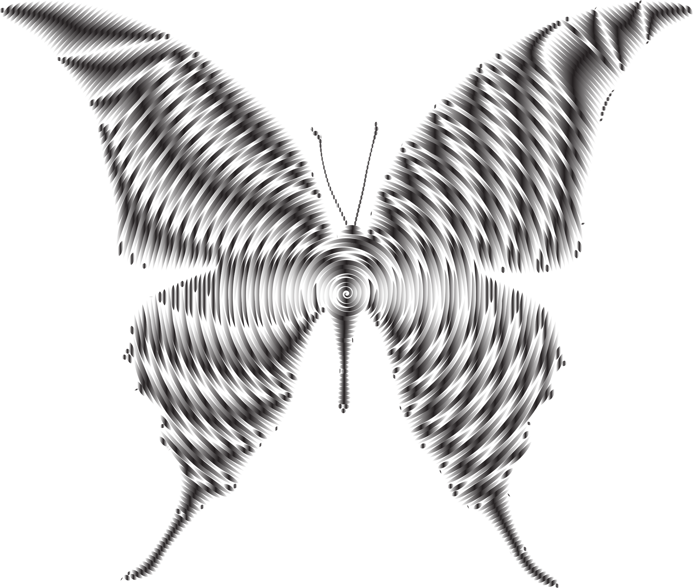 Prismatic Butterfly Silhouette 6 Concentric 2 by GDJ