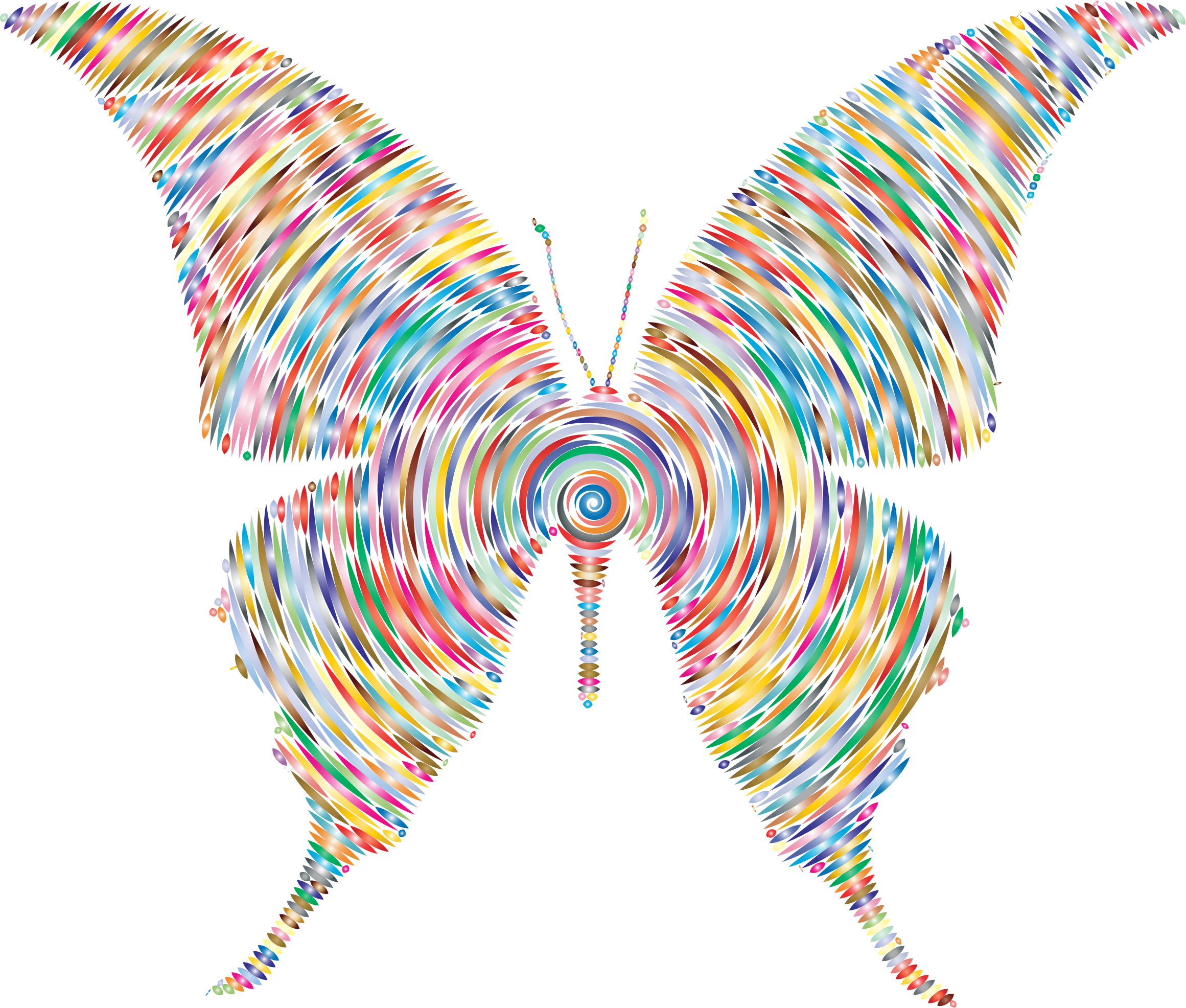 Prismatic Butterfly Silhouette 6 Concentric 3 by GDJ