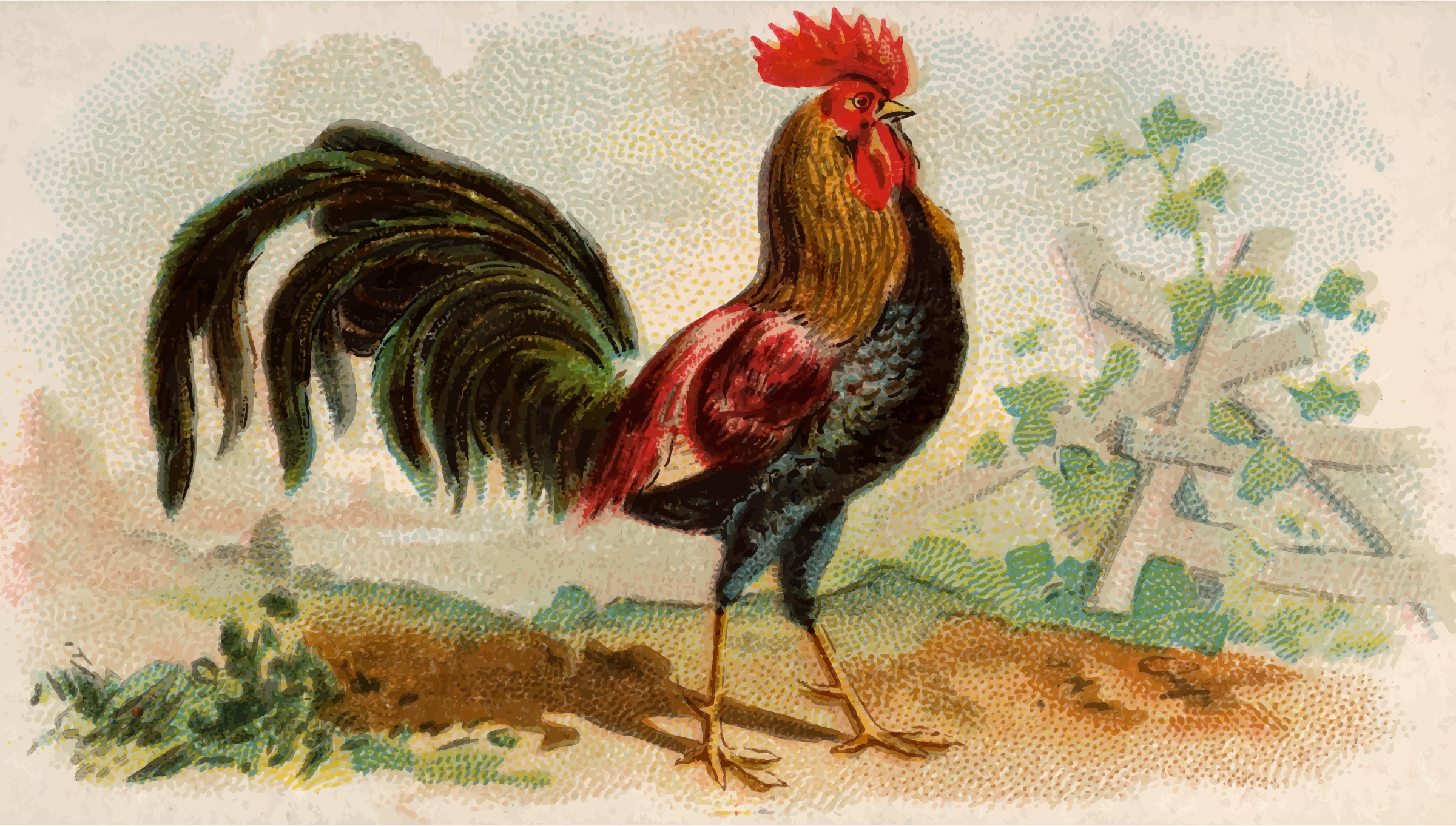 Cigarette card - Brown Leghorn by Firkin