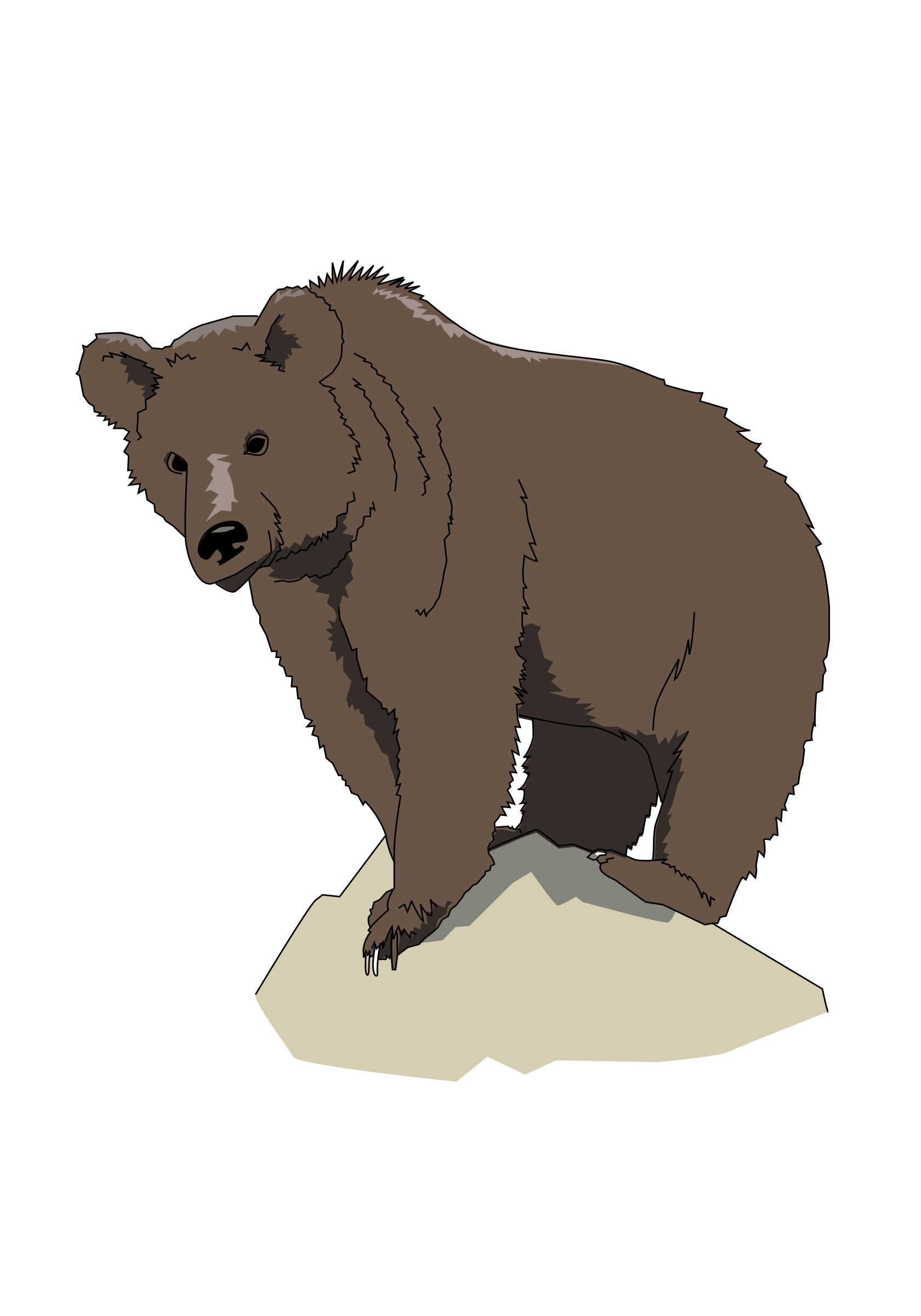 Brown bear by enolynn