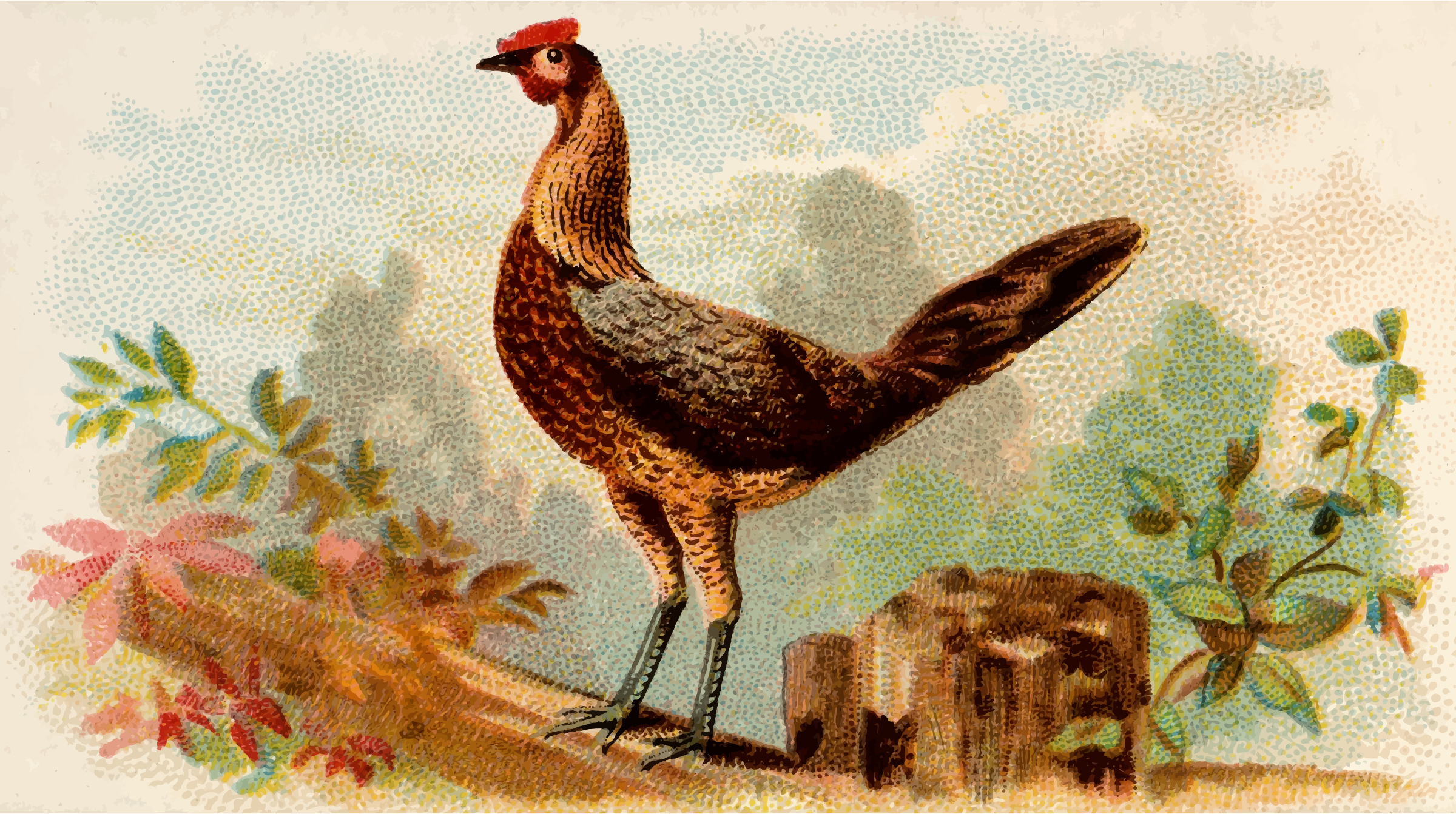 Cigarette card - Black Breasted Red Game Hen by Firkin