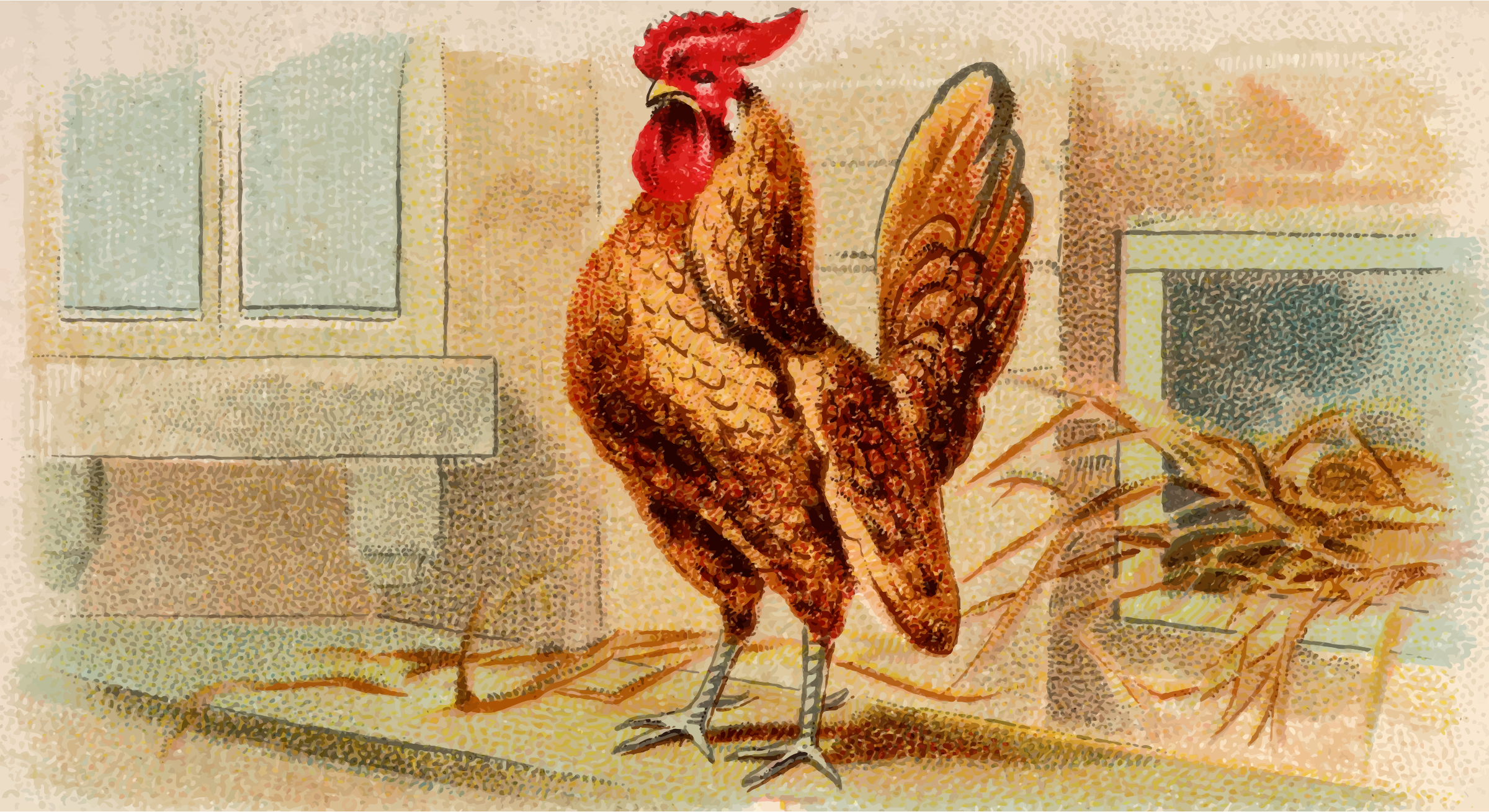 Cigarette card - Gold Laced Bantam by Firkin