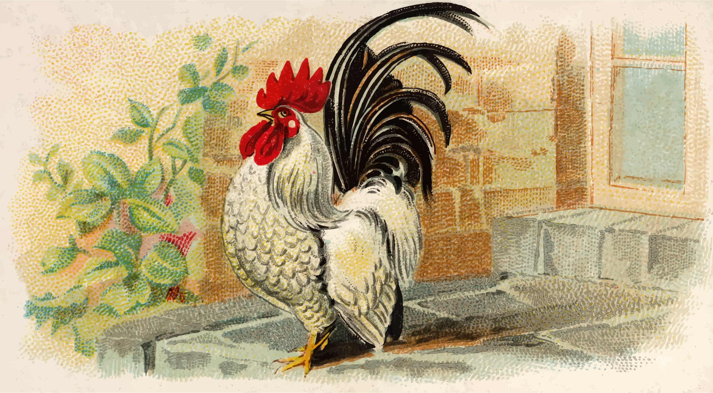 Cigarette card - Japanese Bantam by Firkin