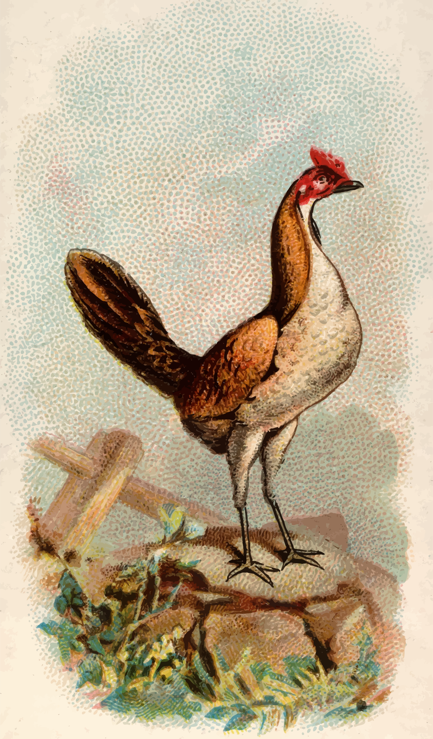Cigarette card - Wheaten Game Hen by Firkin
