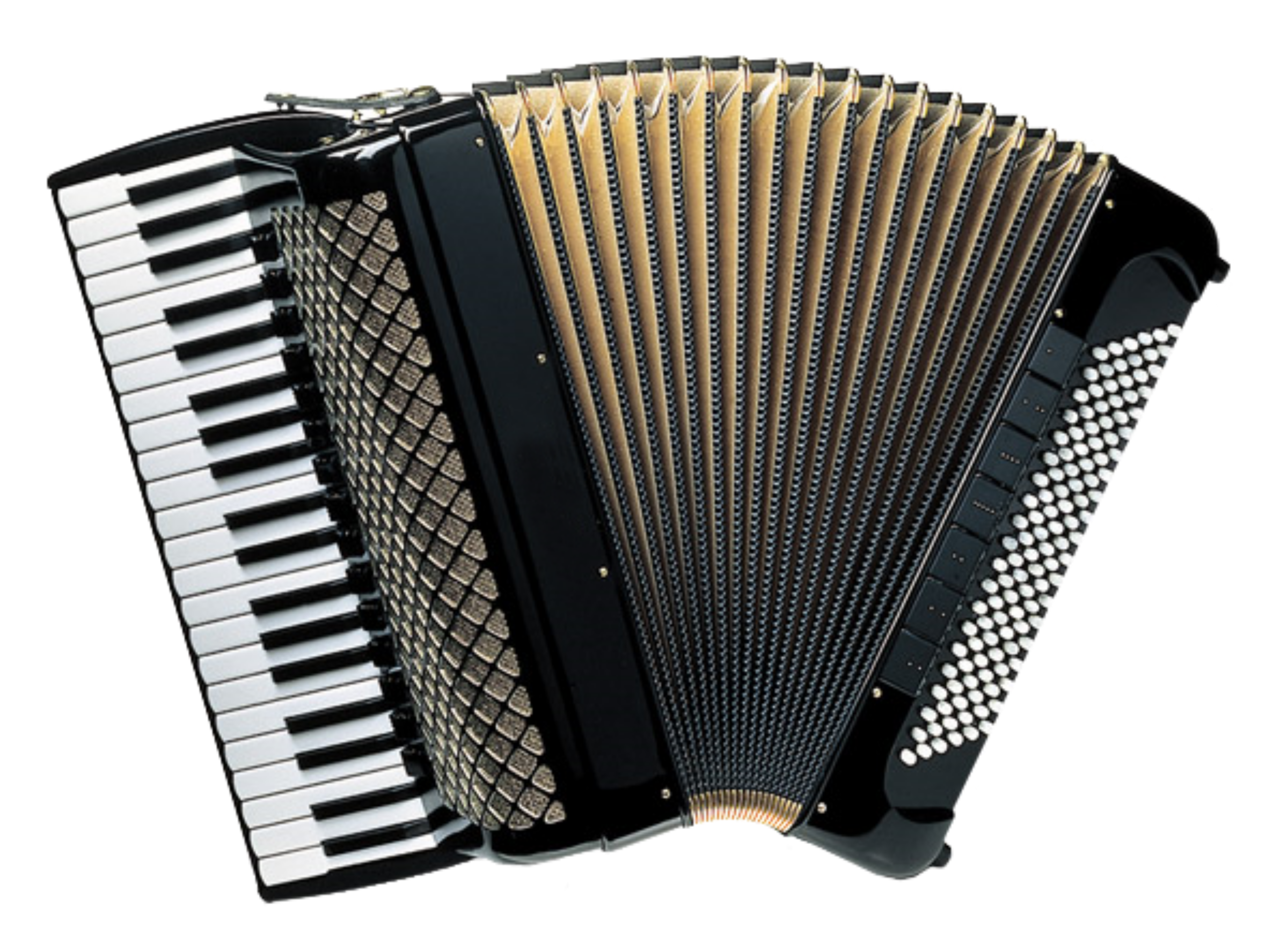 Piano Accordion by Manuela.