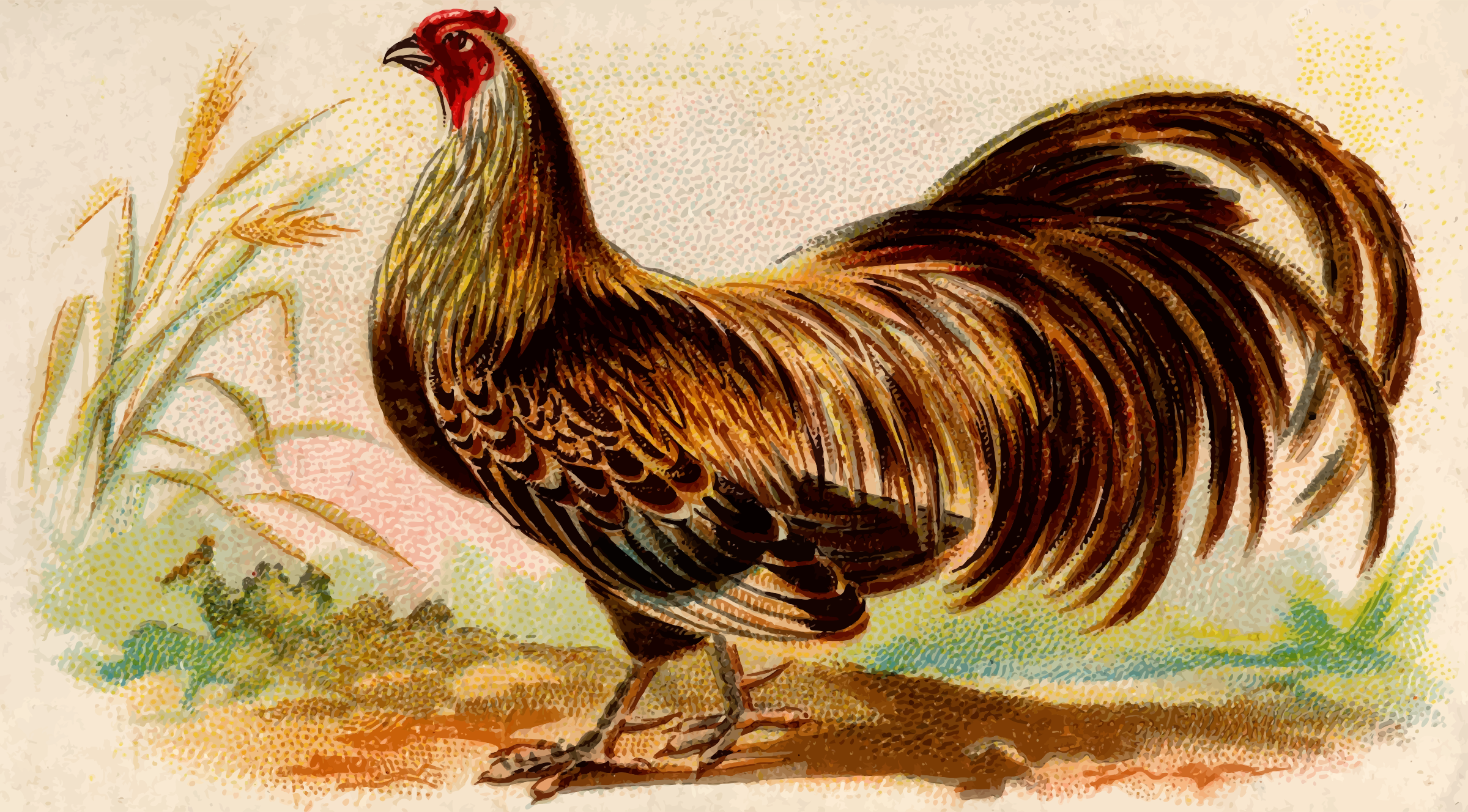 Gigarette card - Ayam Jallak Malay Game Cock by Firkin